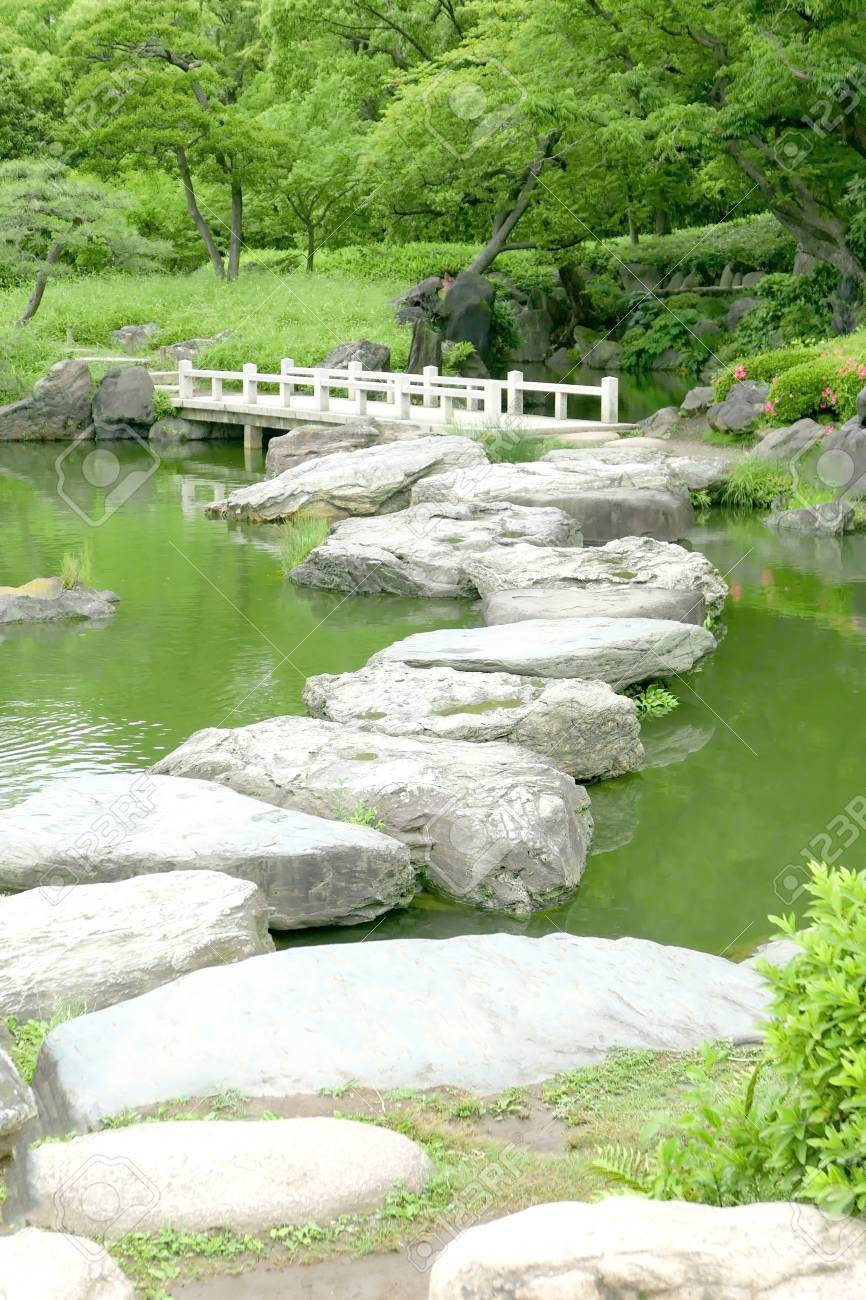 Merveilleux Green Trees, Grasses, Stone Bridge And Water Pond In The Japanese Zen Garden  Stock
