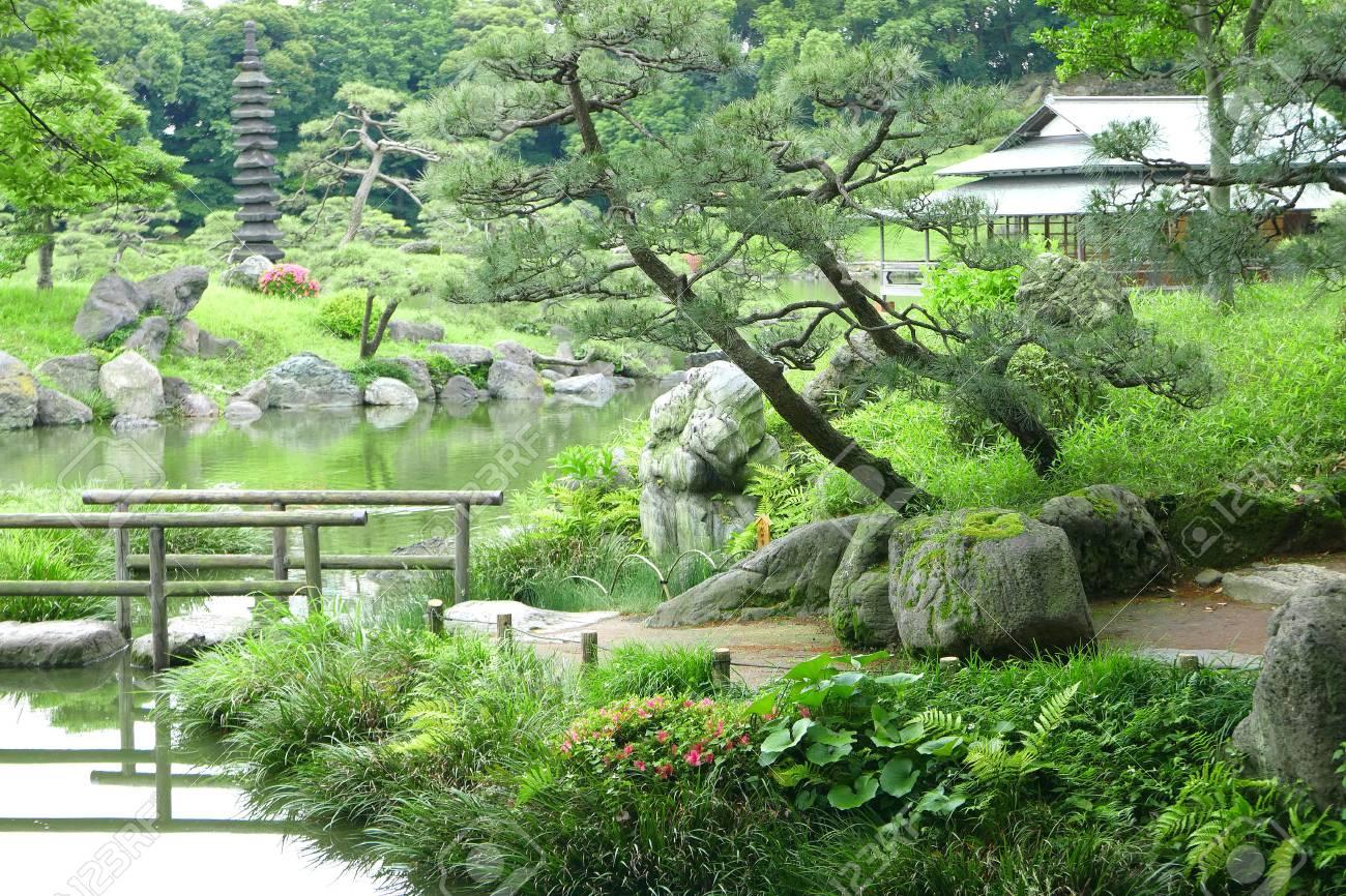 Construction Jardin Japonais les pins, sentier, pont avec la réflexion et la construction de