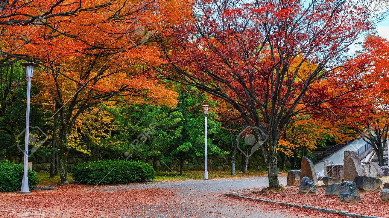 Osaka Castle Garden In Autumn In Japan Stock Photo, Picture And ...