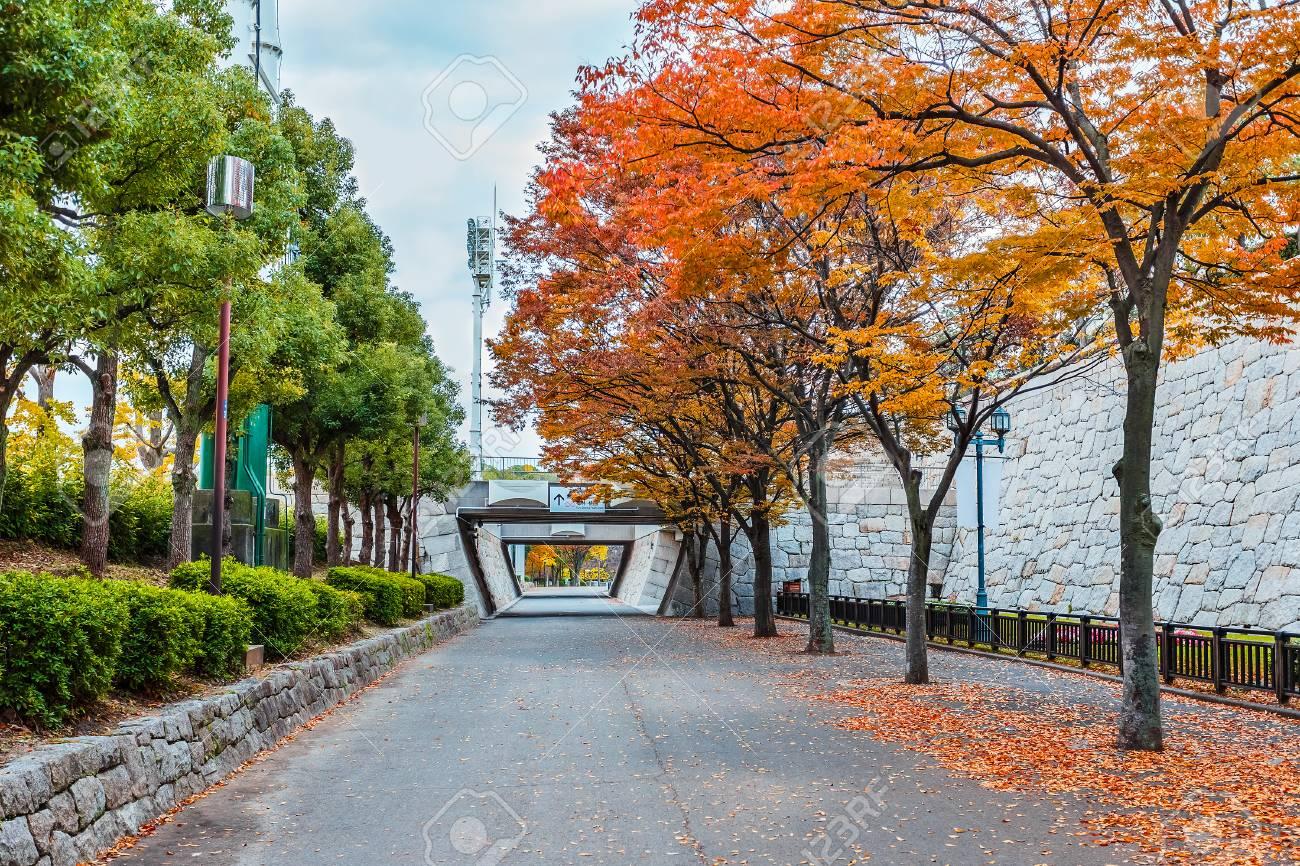 Osaka castle park Stock Photo - 25631992