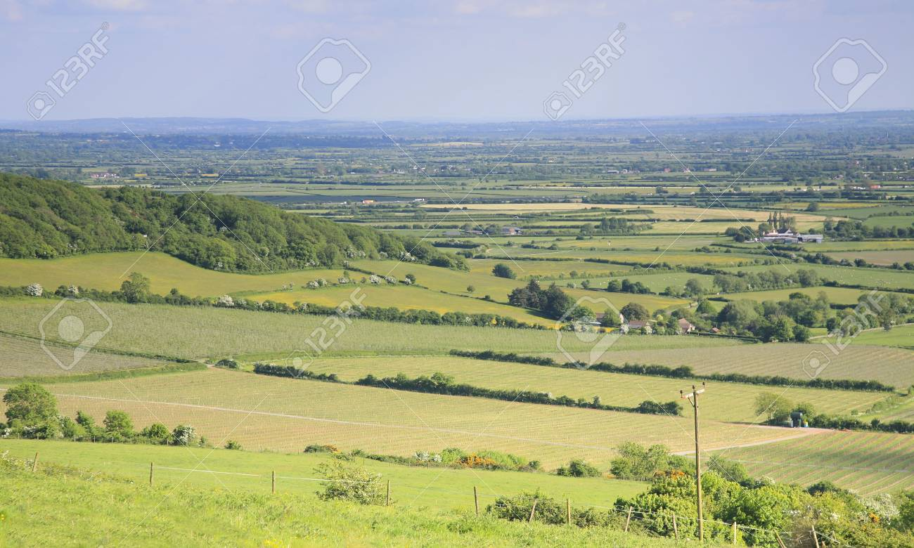 View of Somerset levels Stock Photo - 20675318