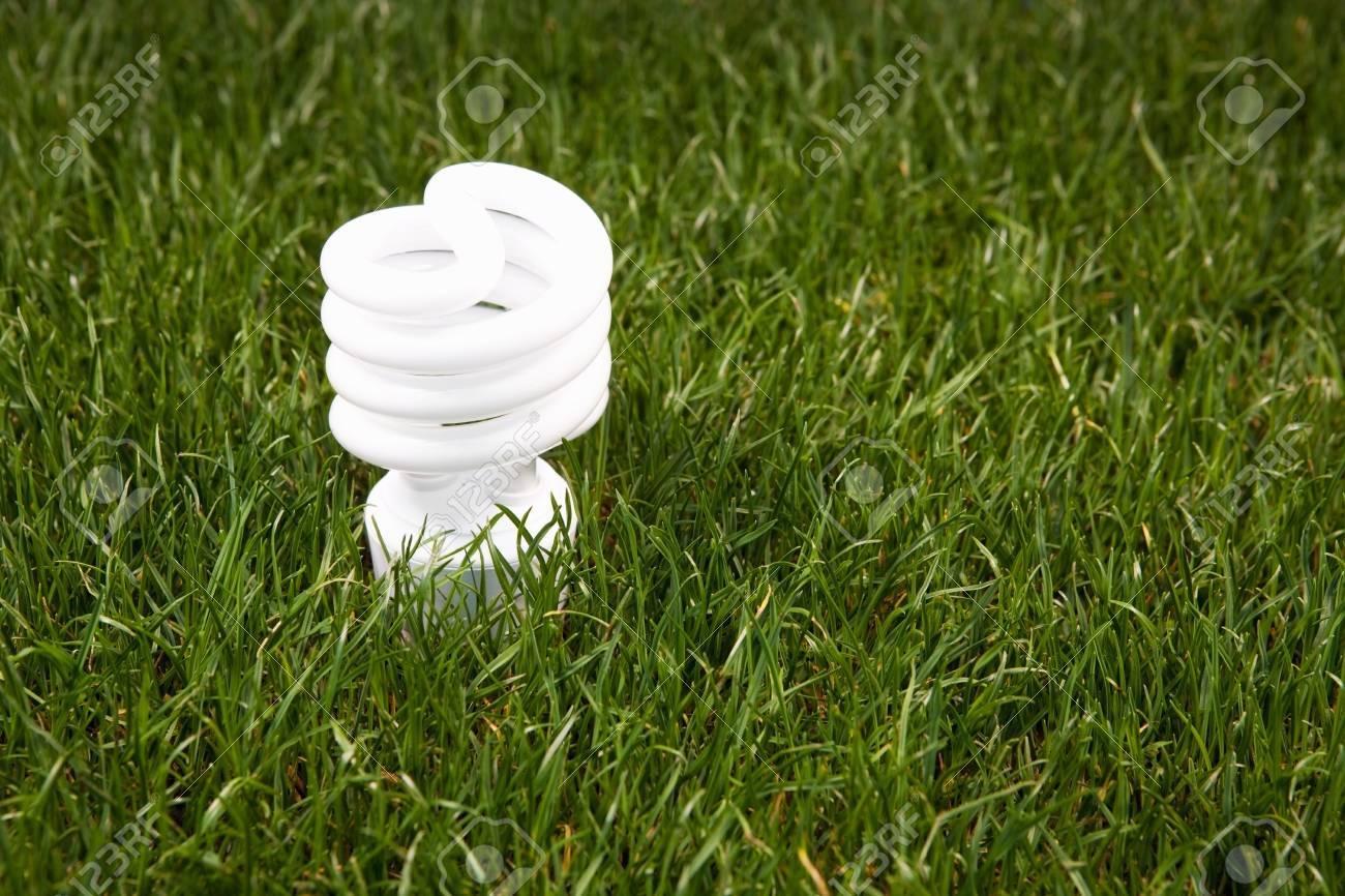Energy saving light bulb in green grass - 5003710