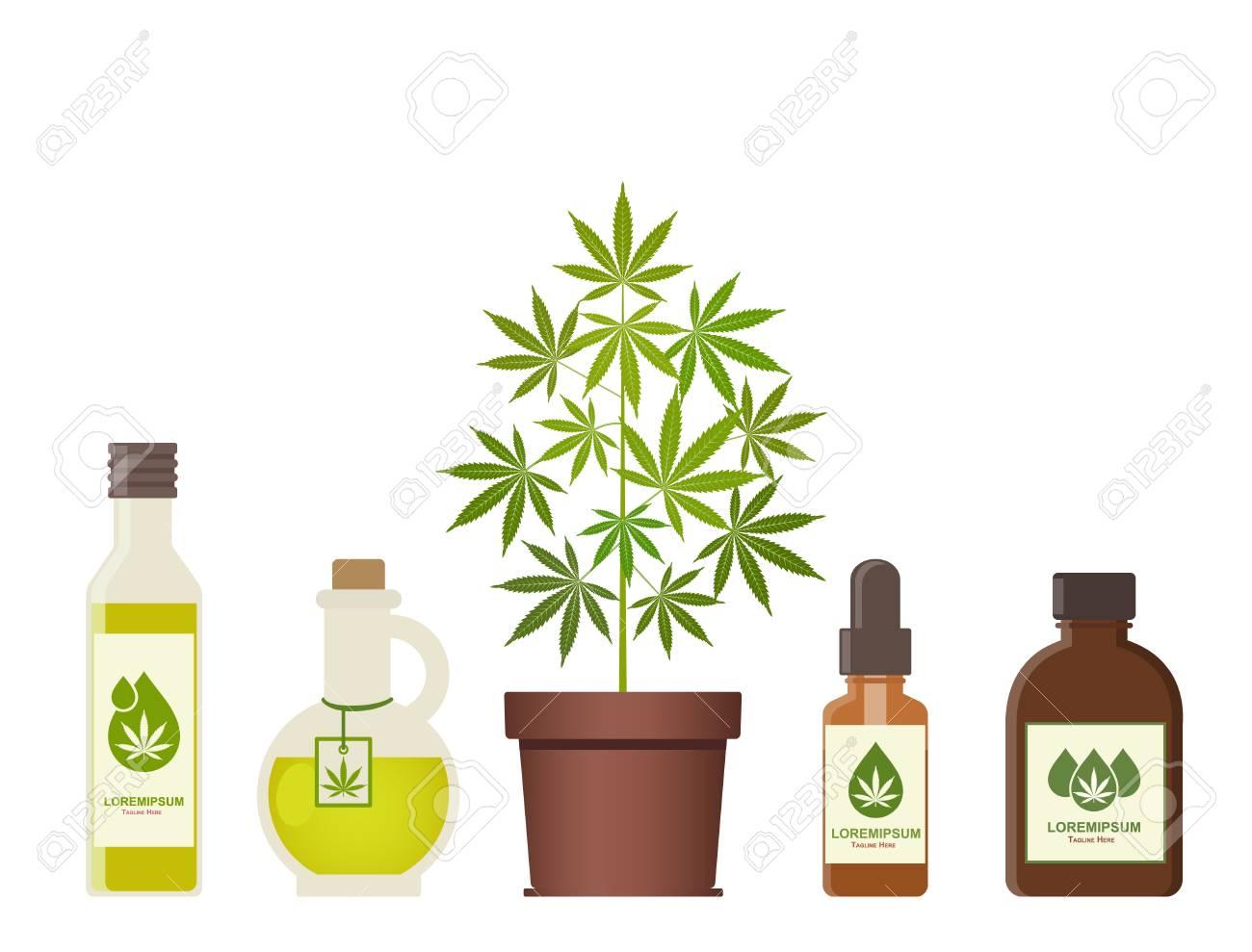 Marijuana plant and cannabis oil  Medical marijuana  Hemp oil