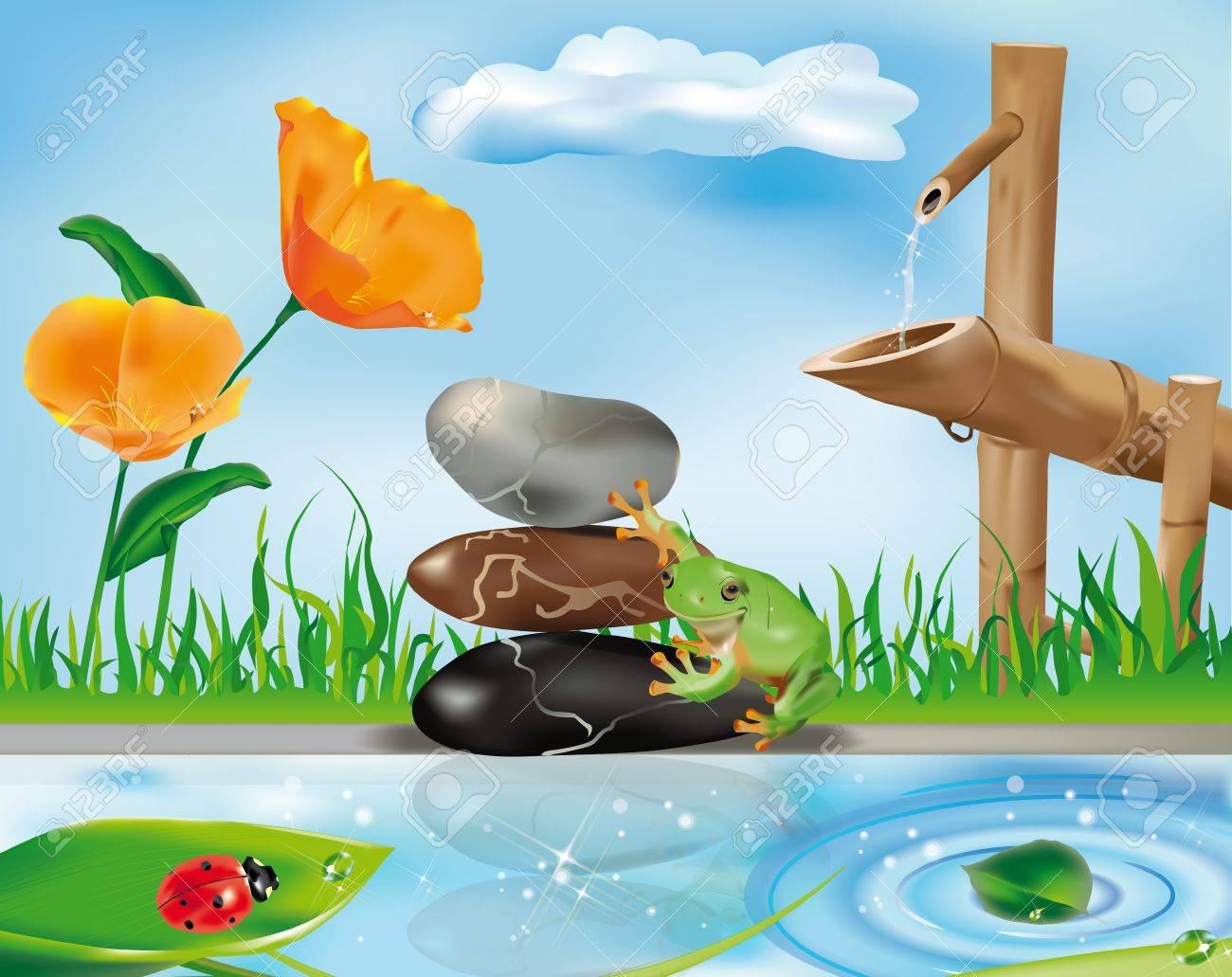 Zen Szene Mit Bambus Brunnen Frosch Auf Steinen Und Marienkafer Auf