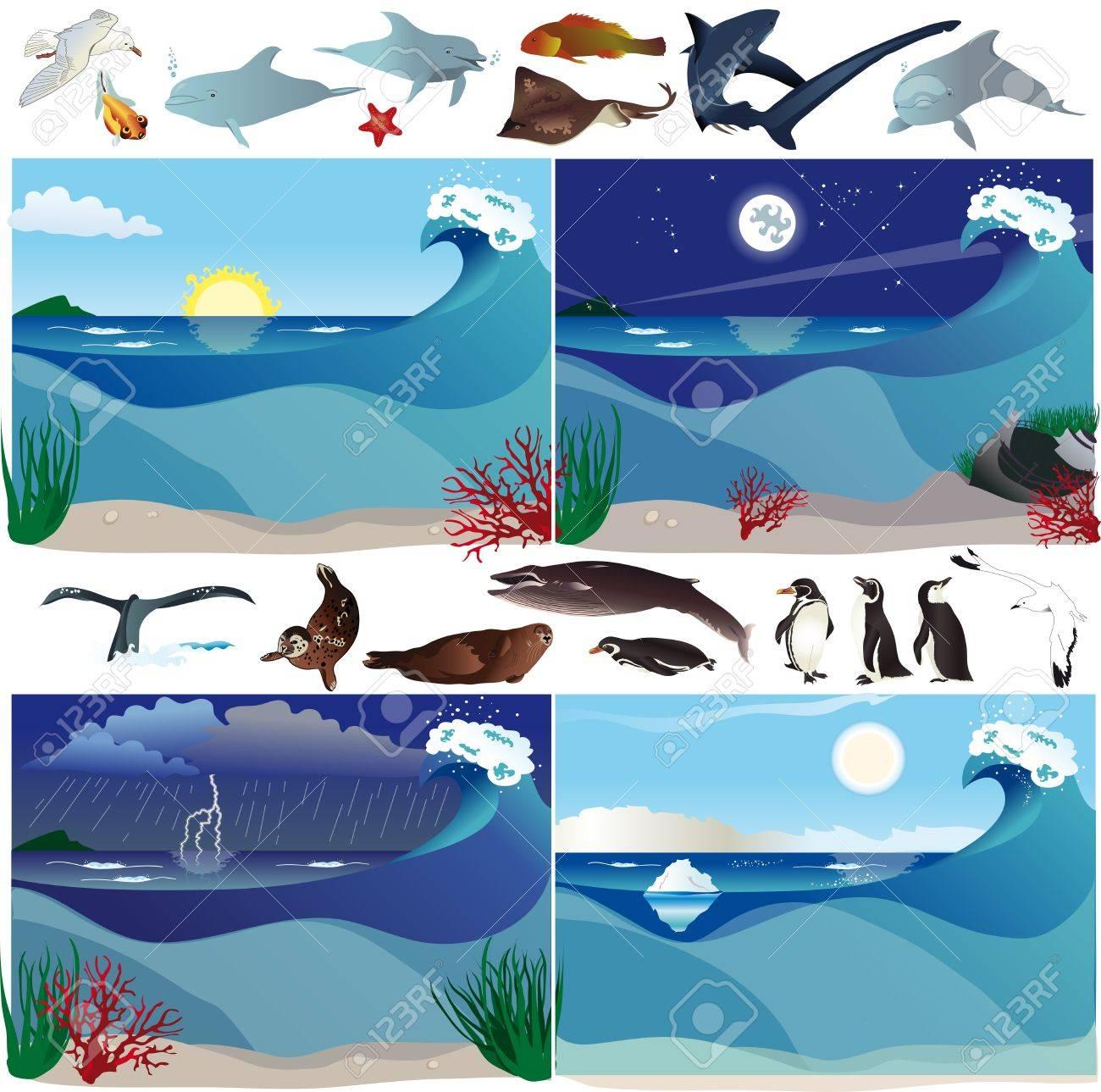 Sea scenarios with various marine animals Stock Vector - 14228487