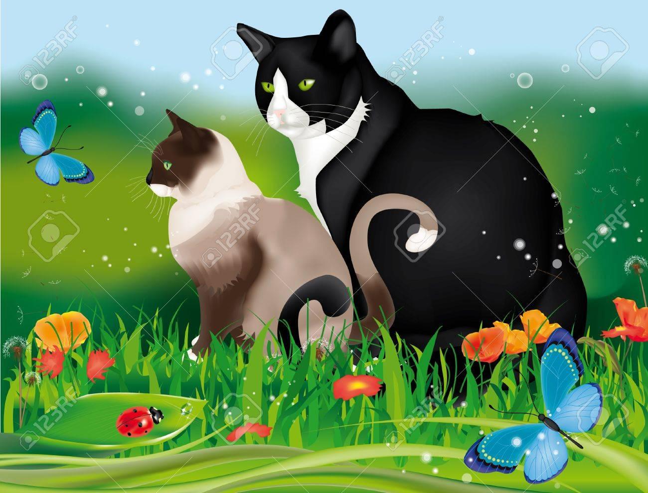 Schöne Zwei Katzen Im Garten Unter Gras, Blumen, Marienkäfer Und ... Blumen Schmetterlinge Im Garten