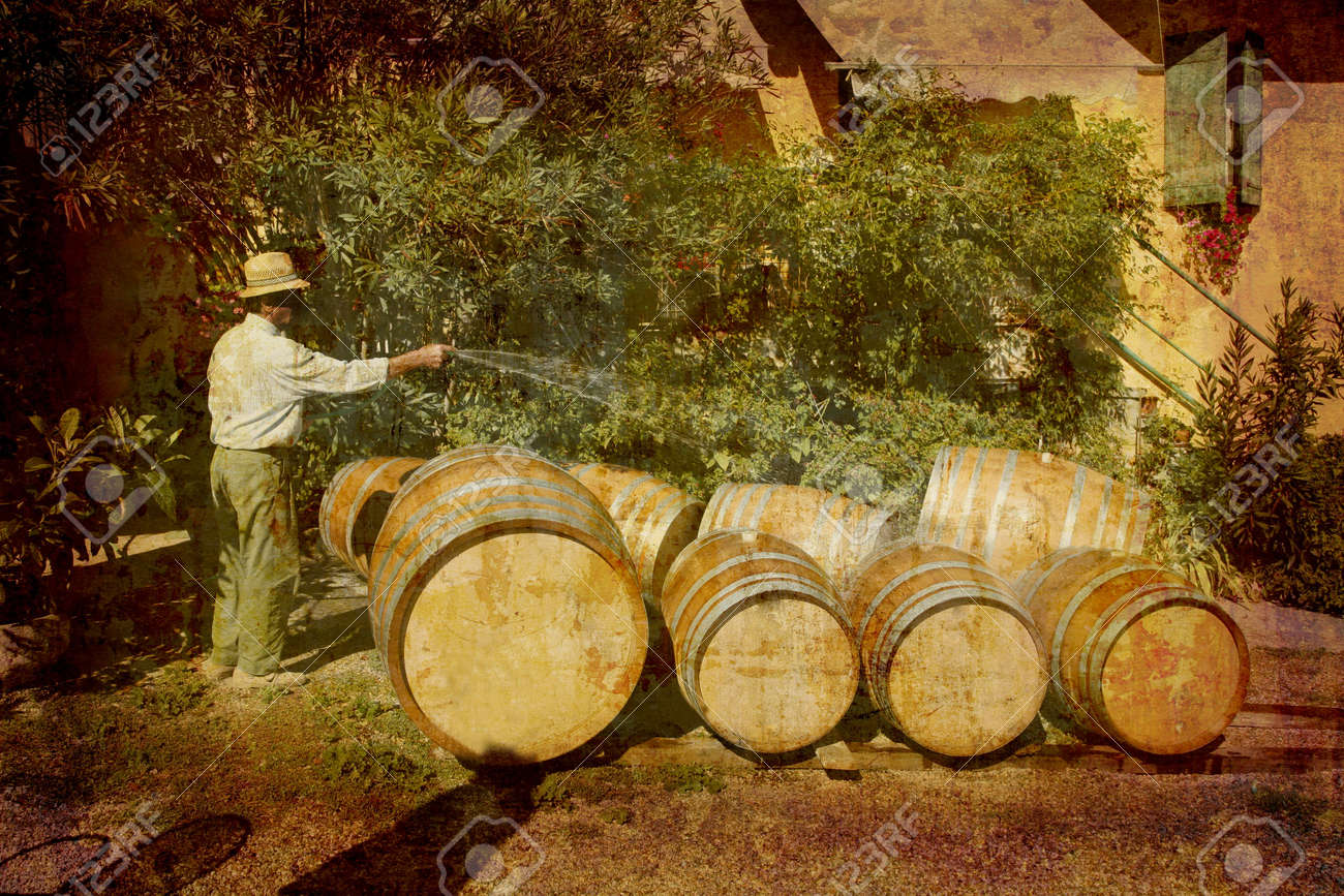 Artistic work of my own in retro style - Postcard from Italy. - Farmer preparing new wine barrels - Piedmont Stock Photo - 1885019