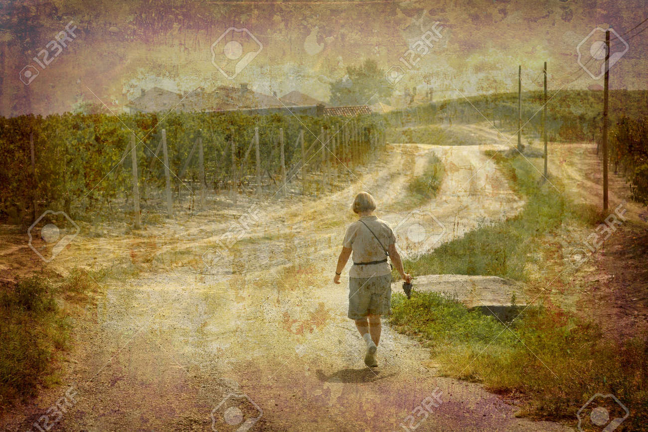 Artistic work of my own in retro style - Postcard from Italy. - Tourist walking through a vineyard - Piedmont. Stock Photo - 2345654