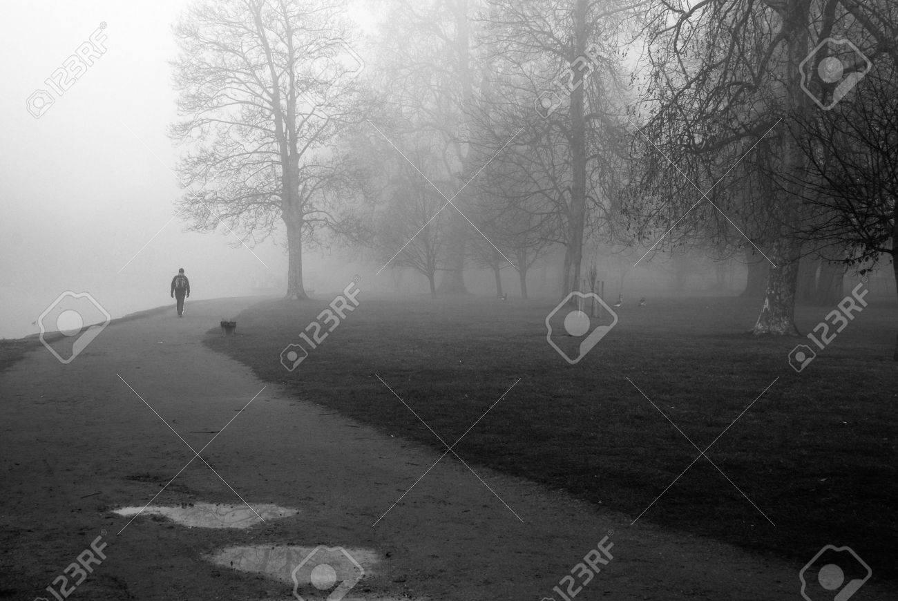 foggy morning Stock Photo - 4031001