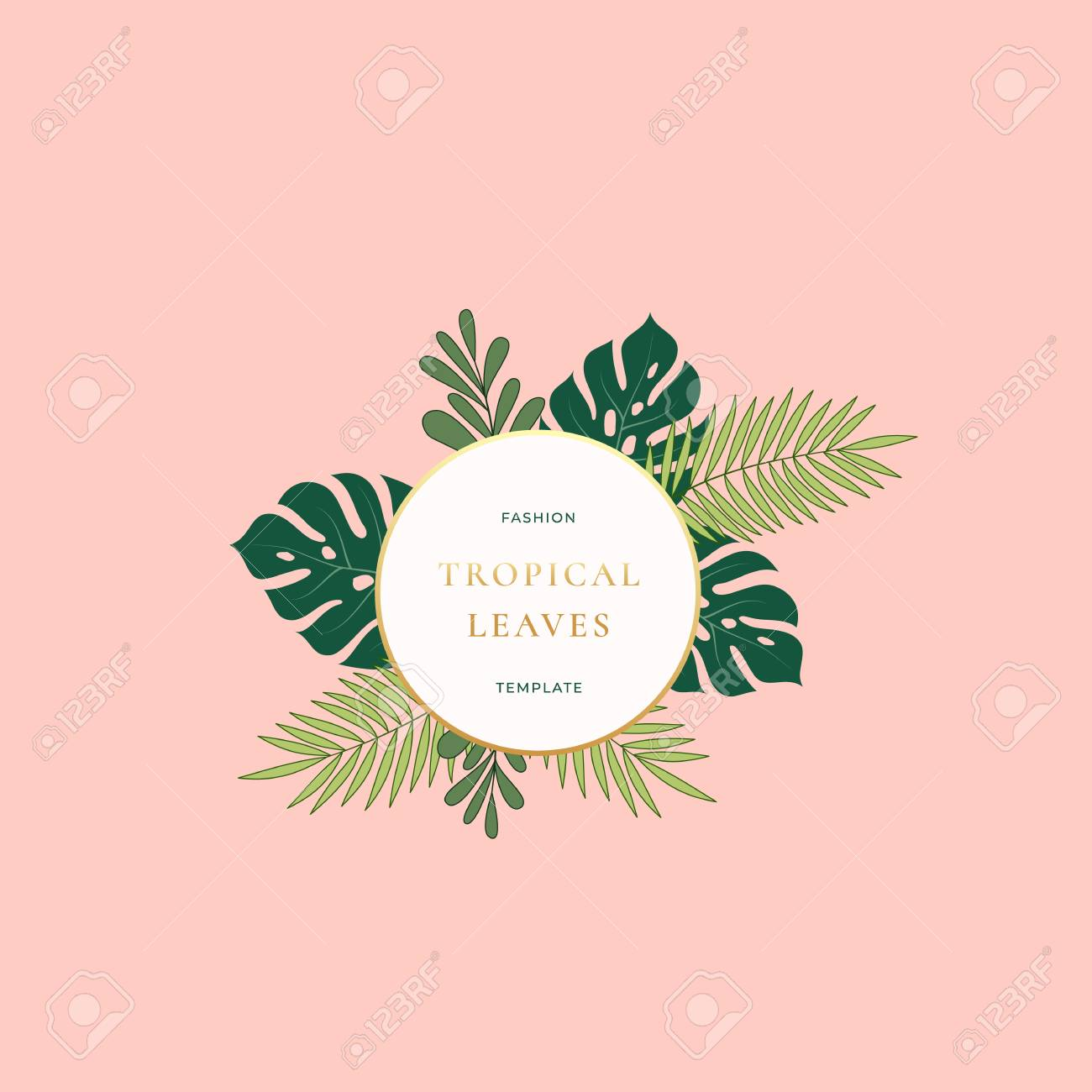 Monstera Palm Tropical Leaves Fashion Sign Emblem Card Or Logo Royalty Free Cliparts Vectors And Stock Illustration Image 94975827 Choose from over a million free vectors, clipart graphics, vector art images, design templates, and illustrations created by artists worldwide! monstera palm tropical leaves fashion sign emblem card or logo