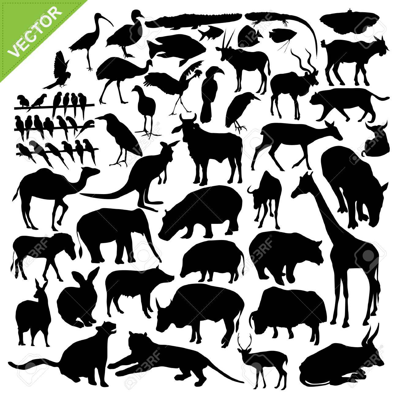 Animals silhouettes collections Stock Vector - 16028117