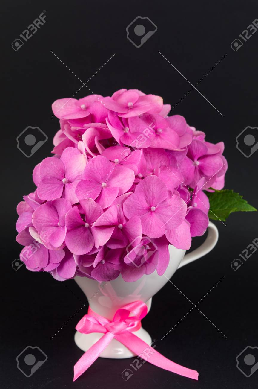 Bunch Of Hortensia Pink Flowers In A Vase On Black Background Stock