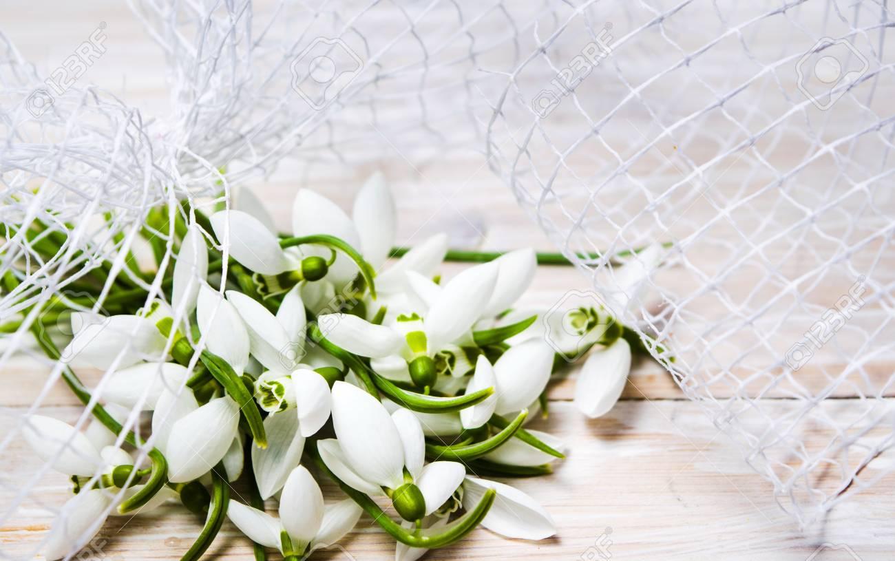 Snowdrop Winter Flowers Bouquet On White Background Stock Photo