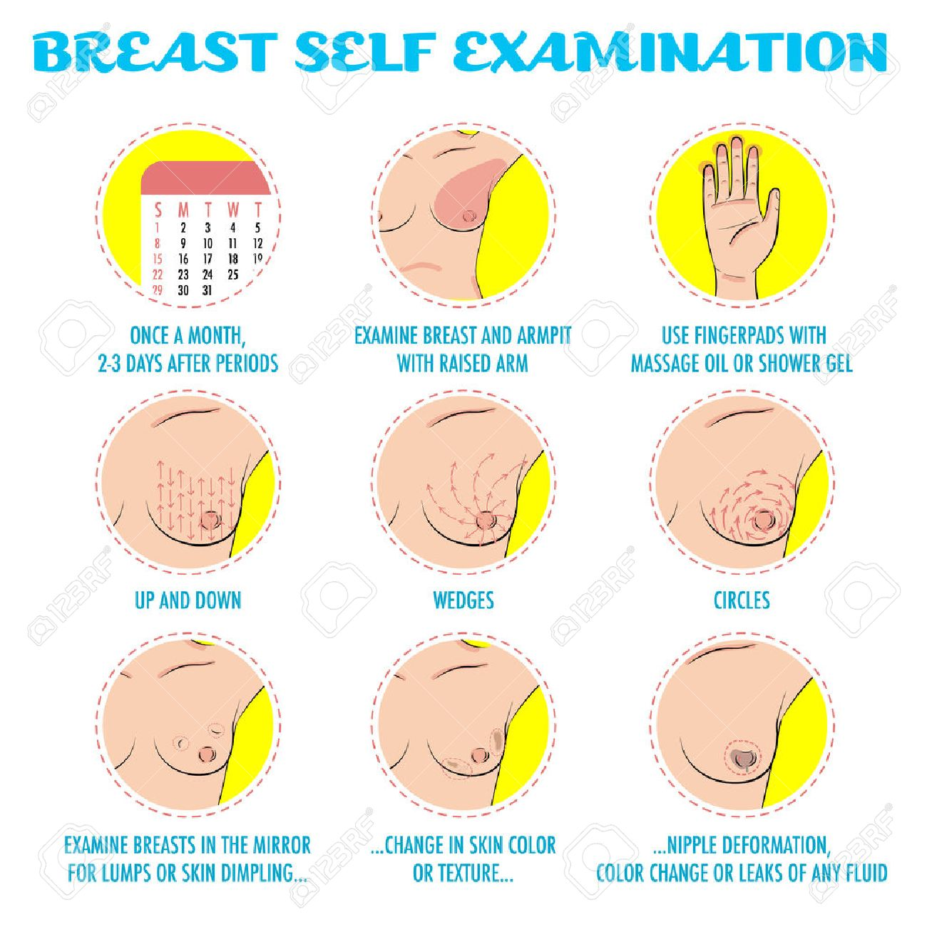 Breast Self Exam Breast Cancer Monthly Examination Infographics Royalty Free Cliparts Vectors And Stock Illustration Image 58753452