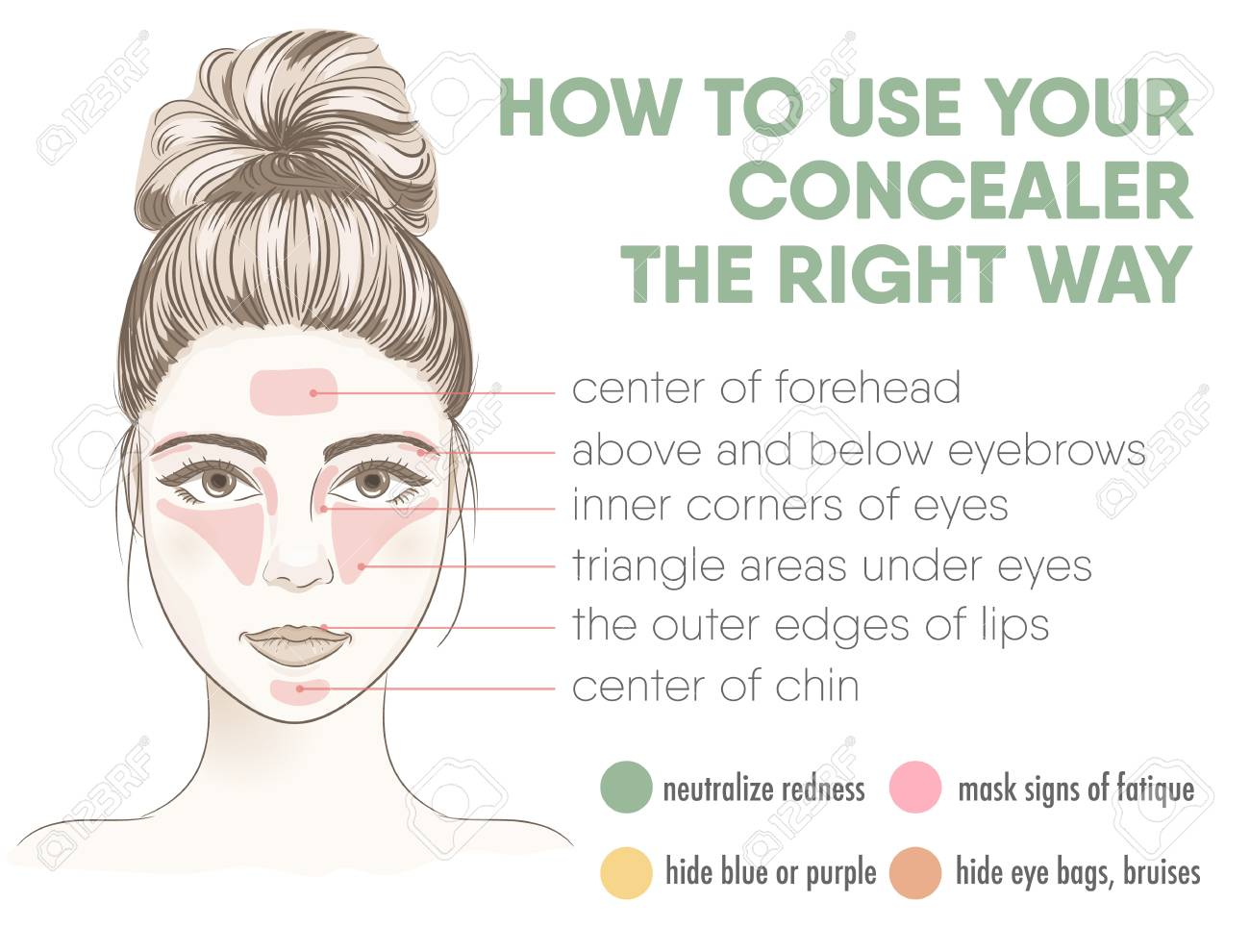How to apply your concealer the right way infographic chart