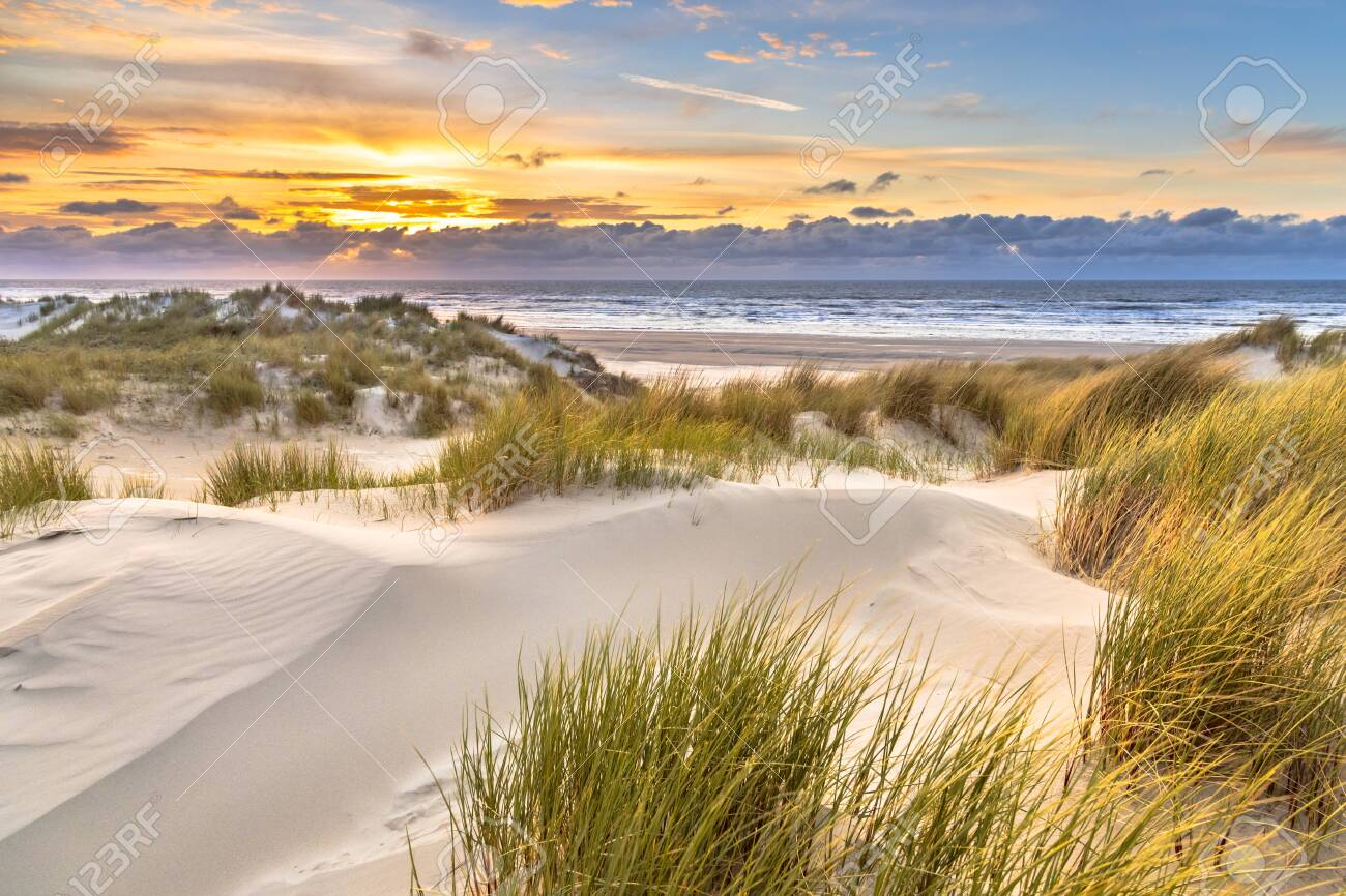 View from dune top over sunset in North Sea from the island of Ameland, Friesland, Netherlands - 151543108