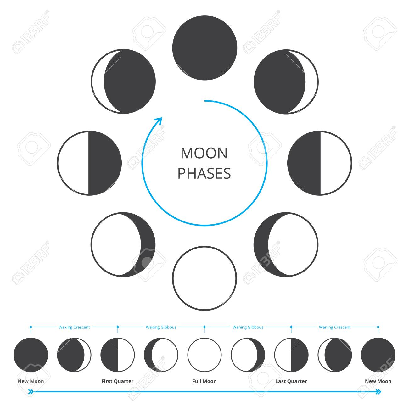 Moon phases icons astronomy lunar phases whole cycle from new moon phases icons astronomy lunar phases whole cycle from new moon to full moon pooptronica Gallery