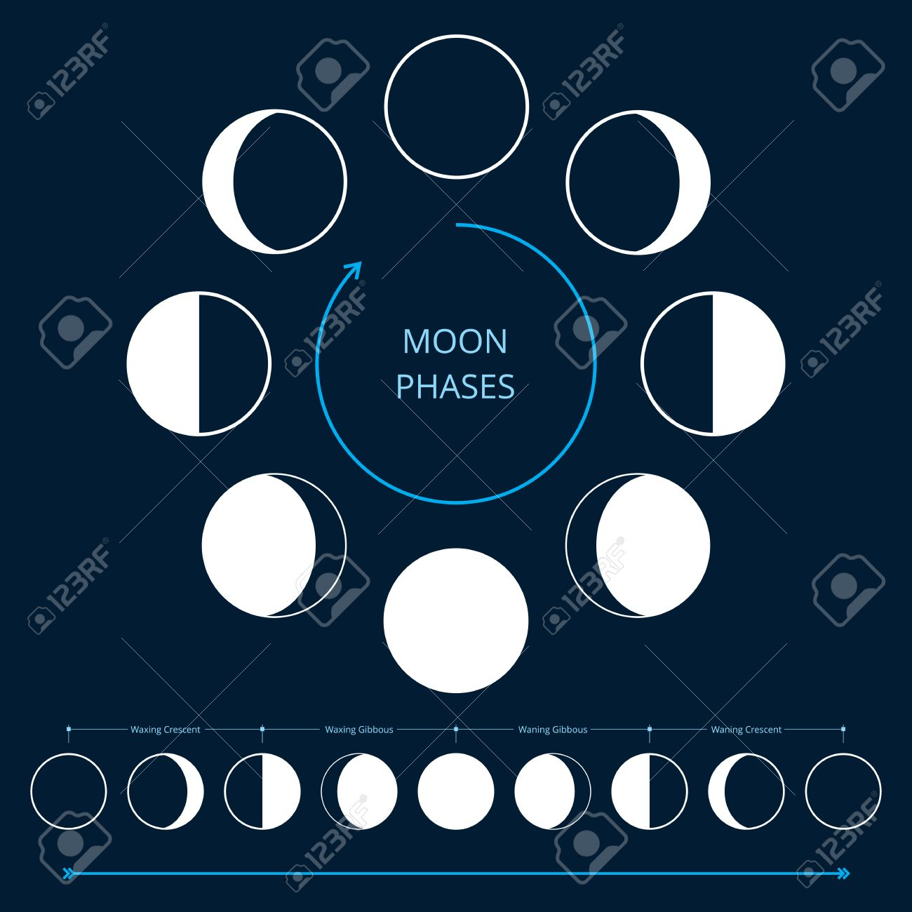 Image result for lunar cycle