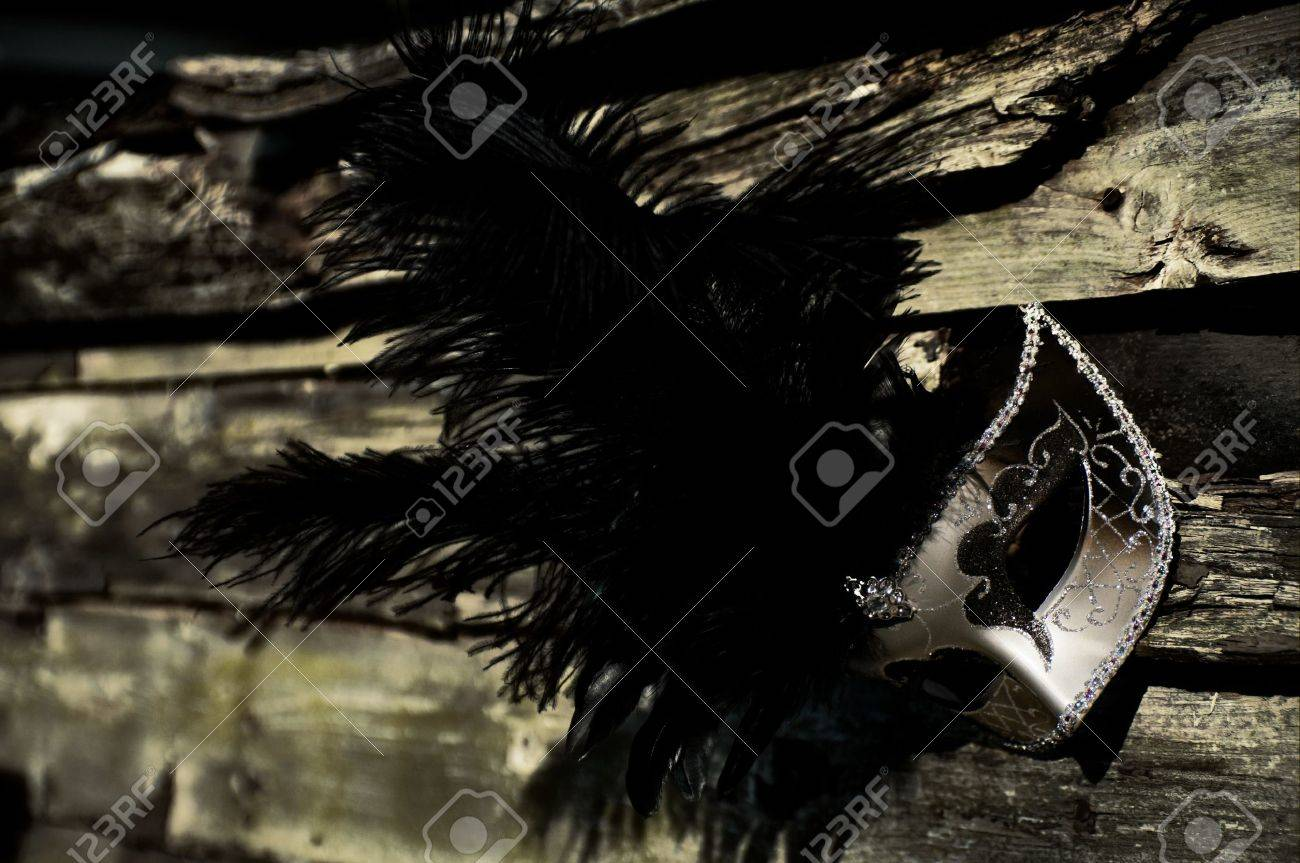 Masquerade - Silver Venetian Mask on Weathered Fence Stock Photo - 15534847