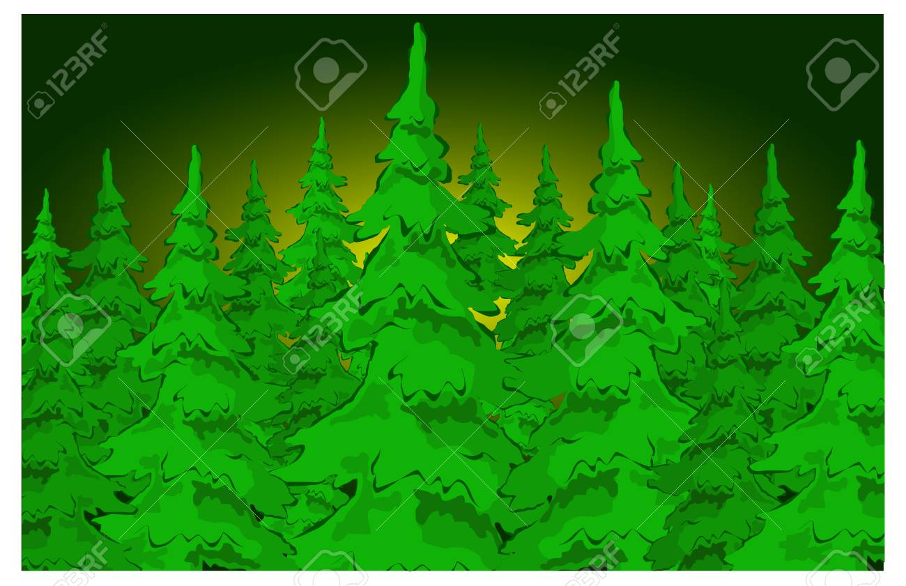 Christmas fur-trees in the night forest. Winter vector illustration Stock Vector - 4597902