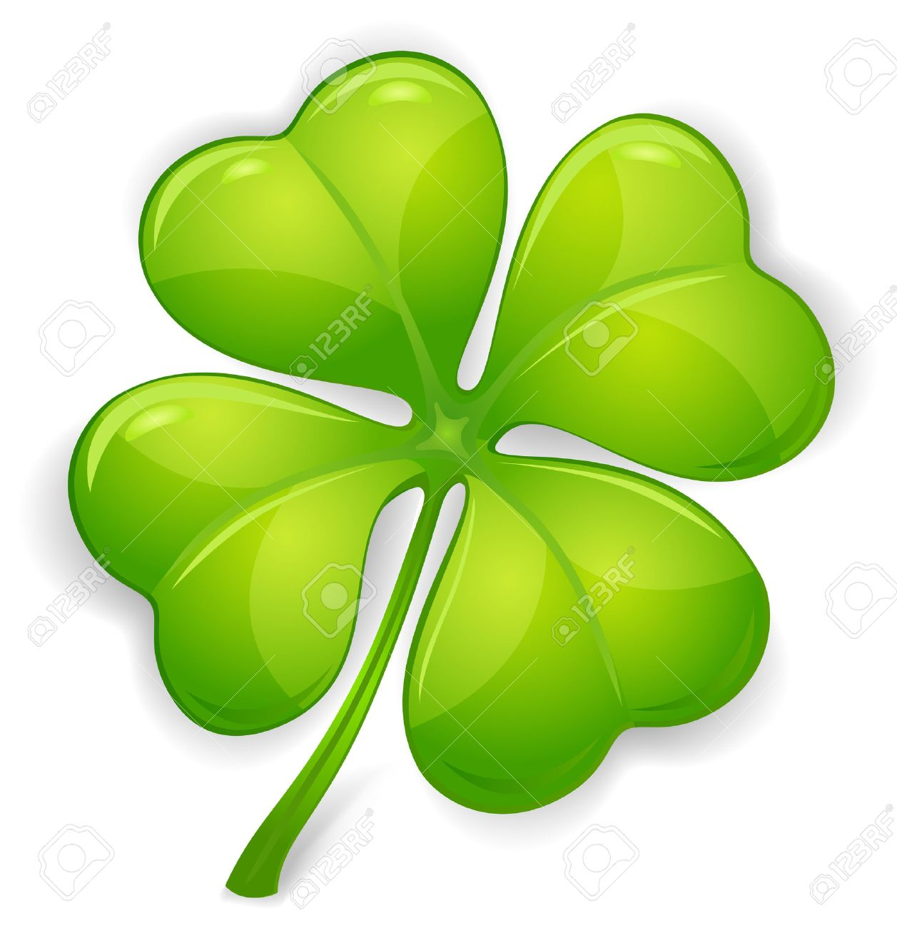 four leaf clover isolated on white vector illustration for st
