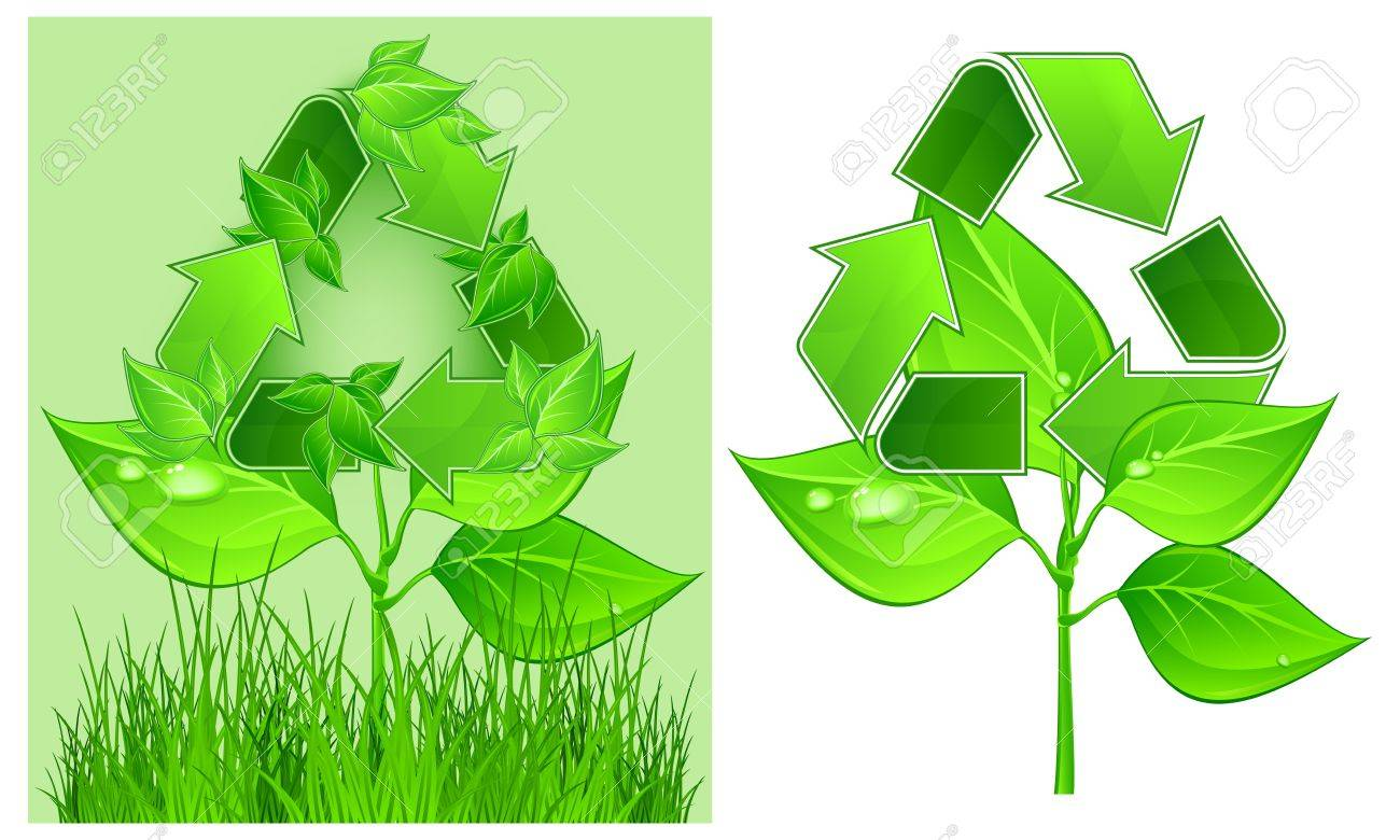 Green recycle symbol on plant on white background Stock Vector - 10419472