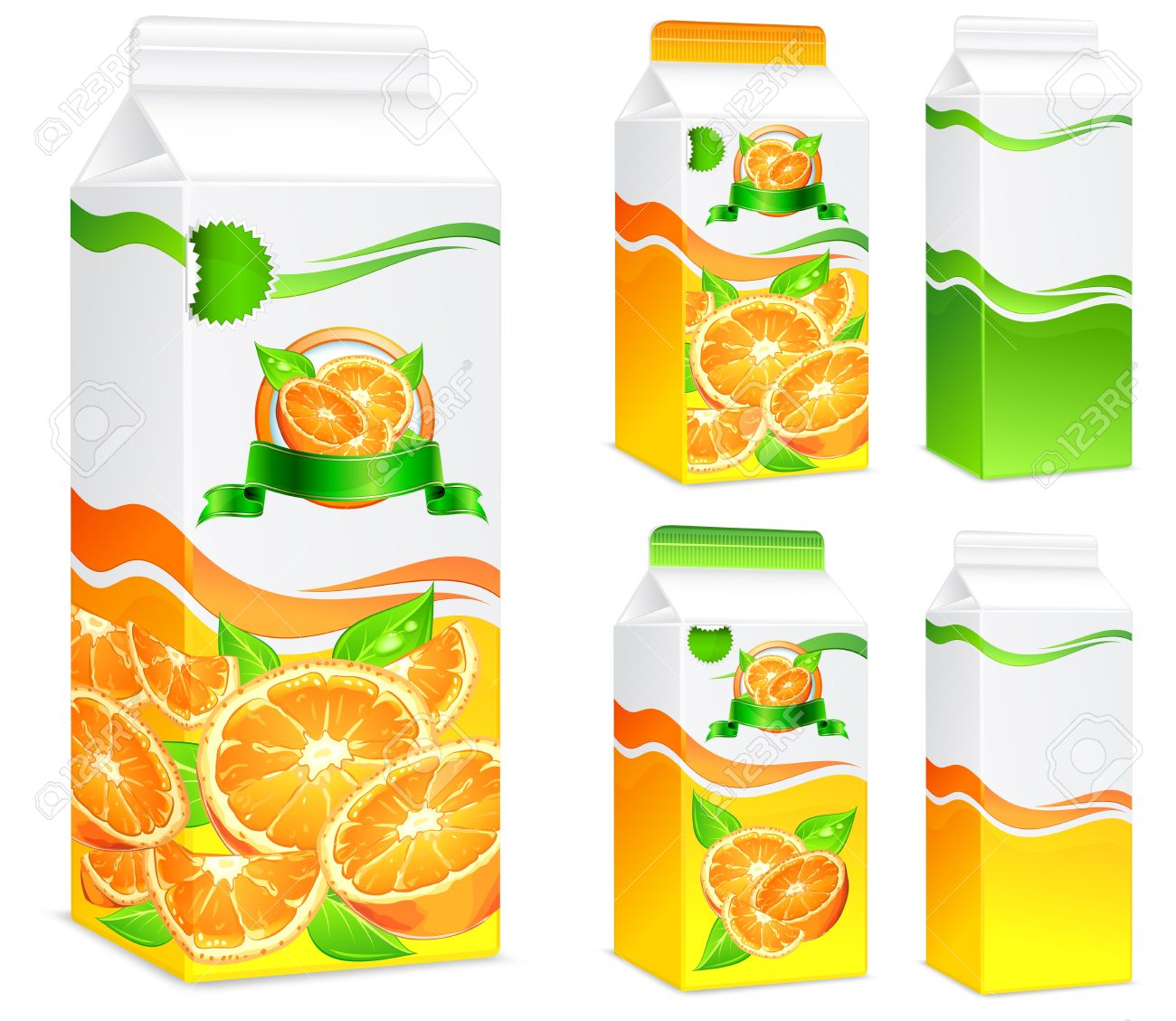 Packages for juice, paper packing with oranges and leaves, vector illustration - 14127659