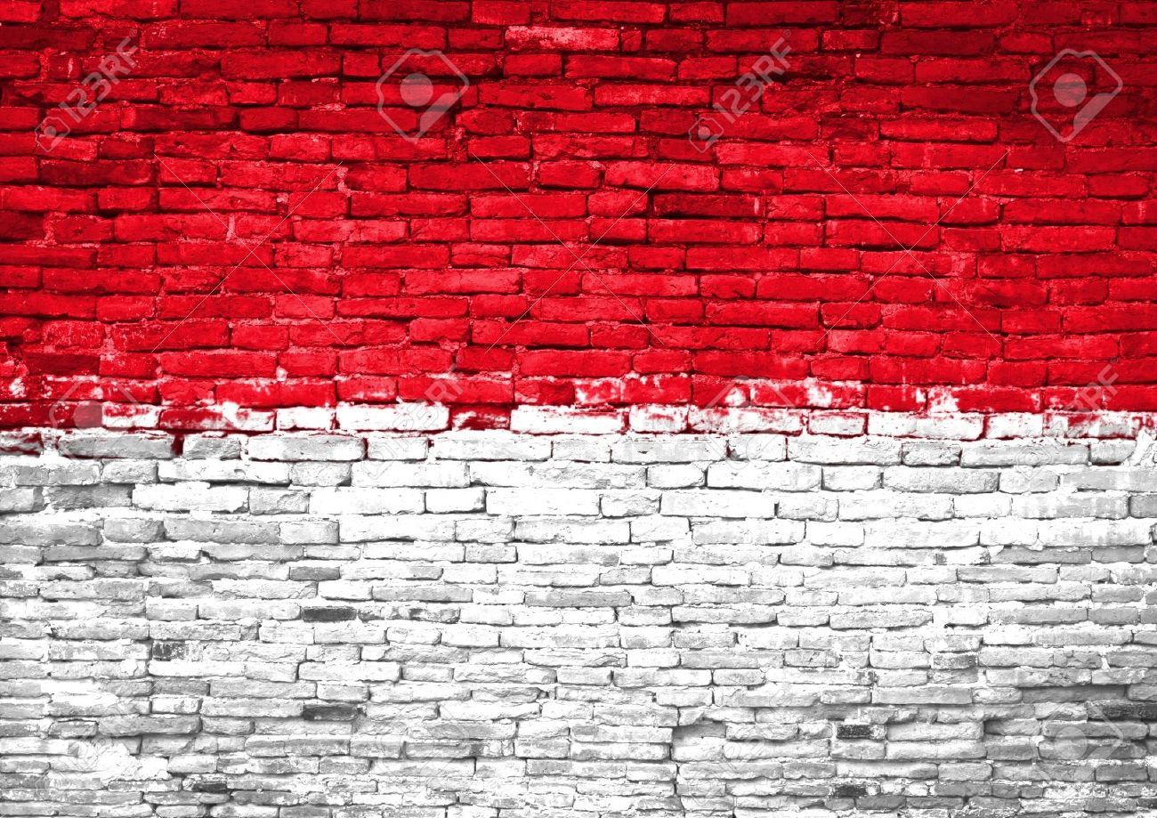 Indonesia flag painted on old brick wall - 10918009