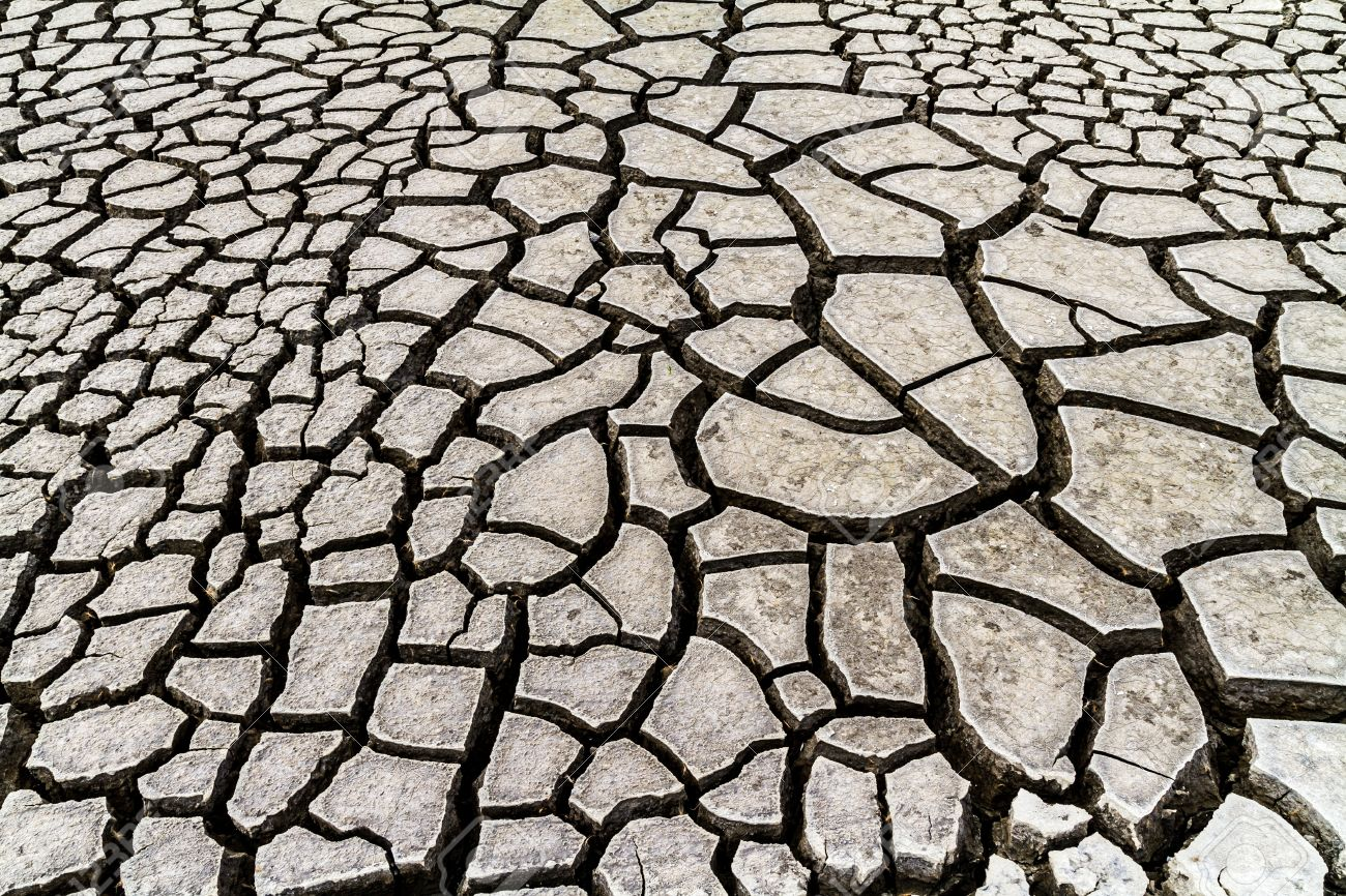 Seamless cracked dry ground texture background - 21980345
