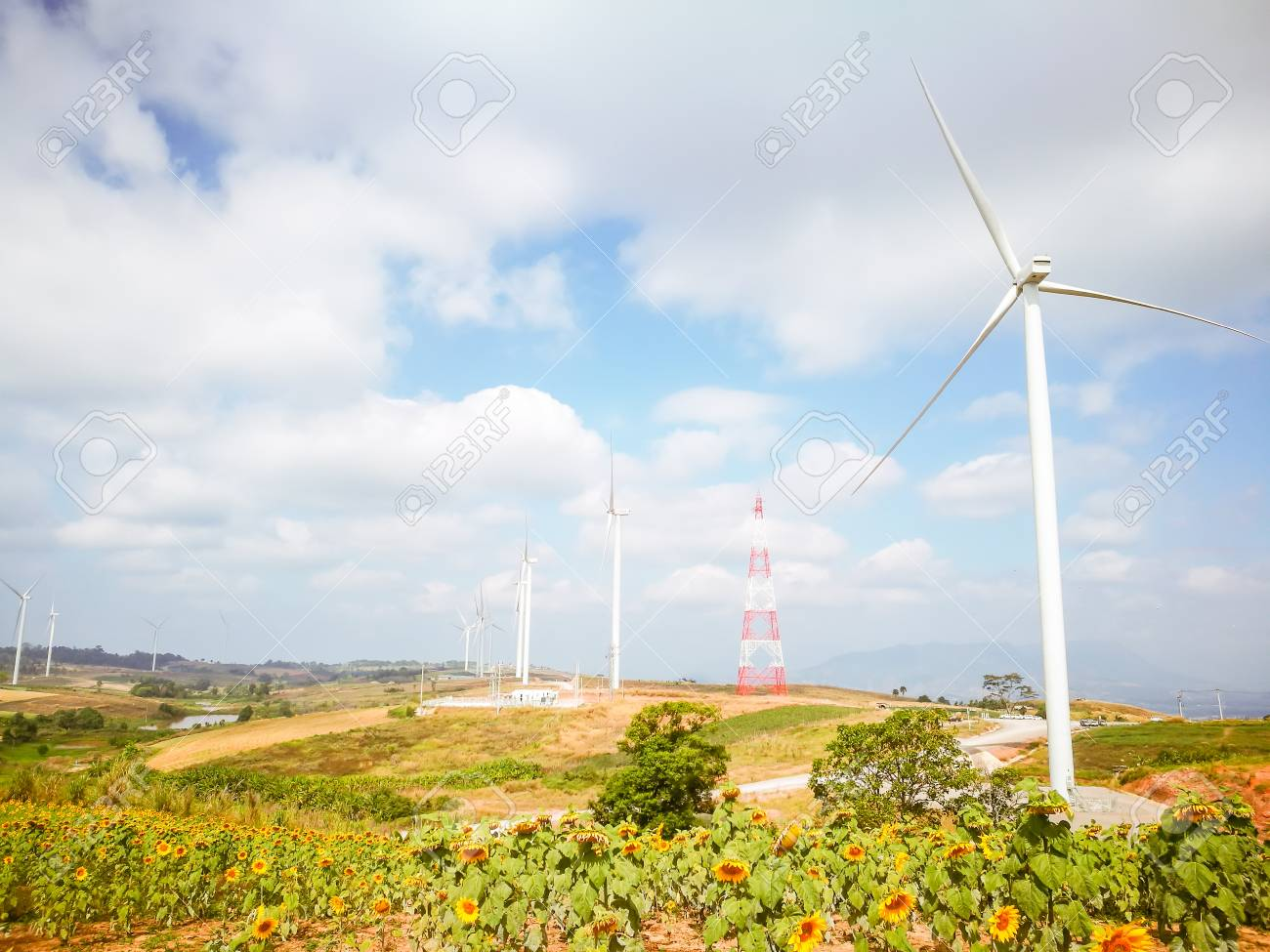 Electricity wind turbines field for generate alternative power with blue sky - 106236389