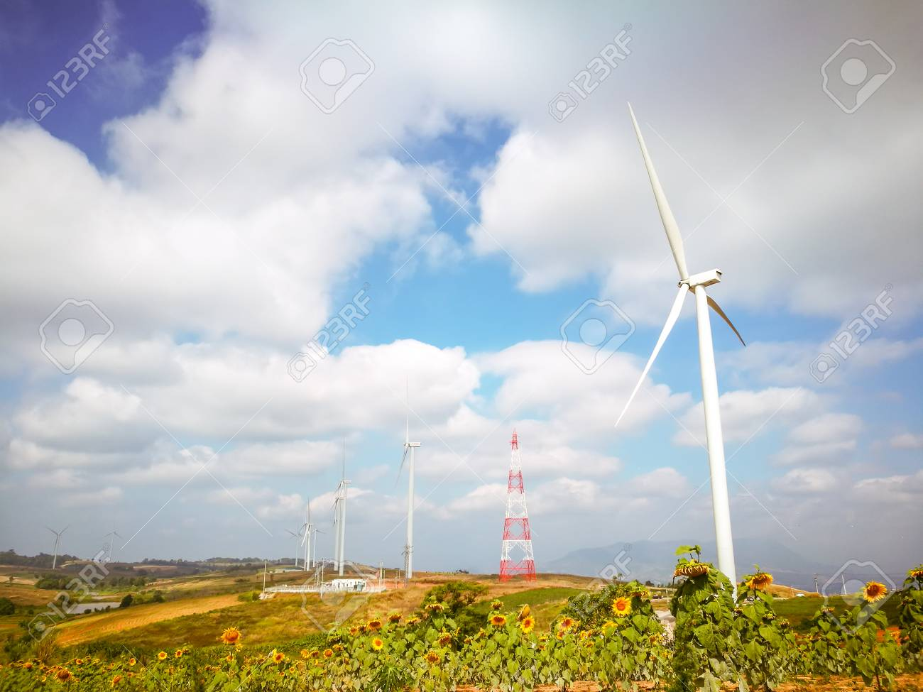 Electricity wind turbines field for generate alternative power with blue sky - 106236409