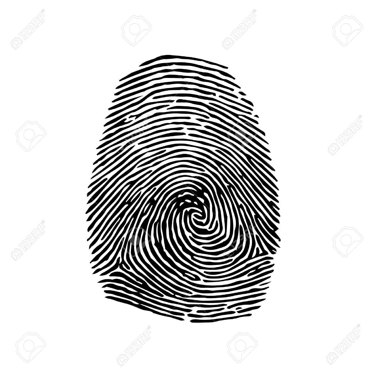 fingerprint vector royalty free cliparts vectors and stock rh 123rf com fingerprinting victorville fingerprinting victoria