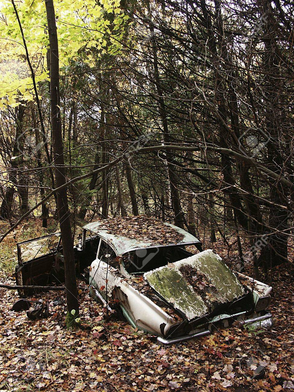 Abandoned Old Car In Woods Stock Photo Picture And Royalty Free