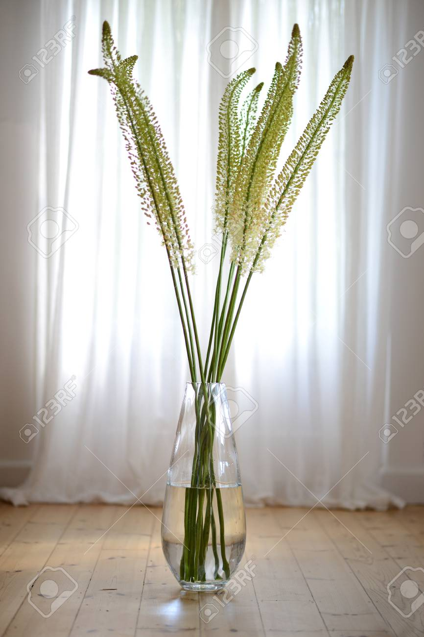 123RF.com & Tall exotic flowers in large glass vase