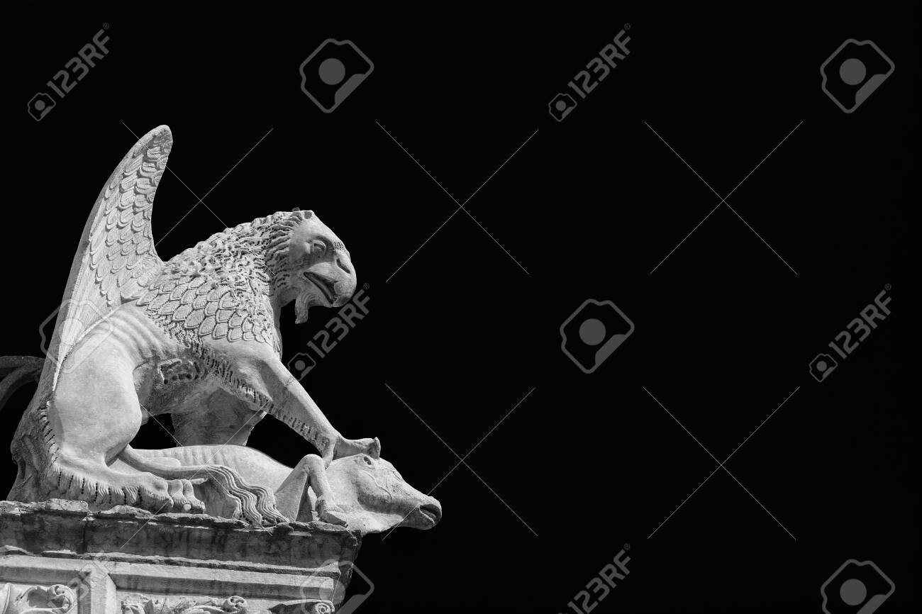 Griffon symbol of the city of Perugia in Umbria. Ancient 14th century medieval marble statue of the mythical beast (Black and White with copy space) - 127529081