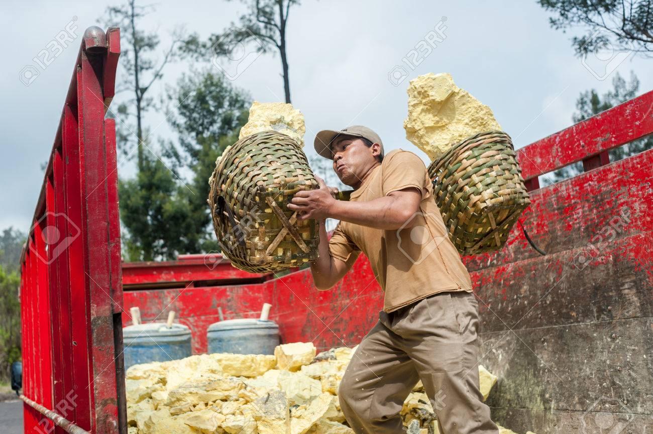 Worker at Kawah Ijen sulphur mine brings his sulphur to the truck Standard-Bild - 43483532