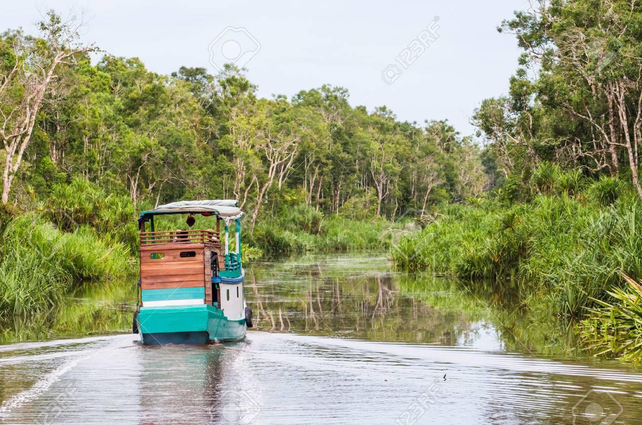 Traditional Klotok sailing on a river in Tanjung Puting National Park, Kalimantan, Indonesia. Standard-Bild - 42451883