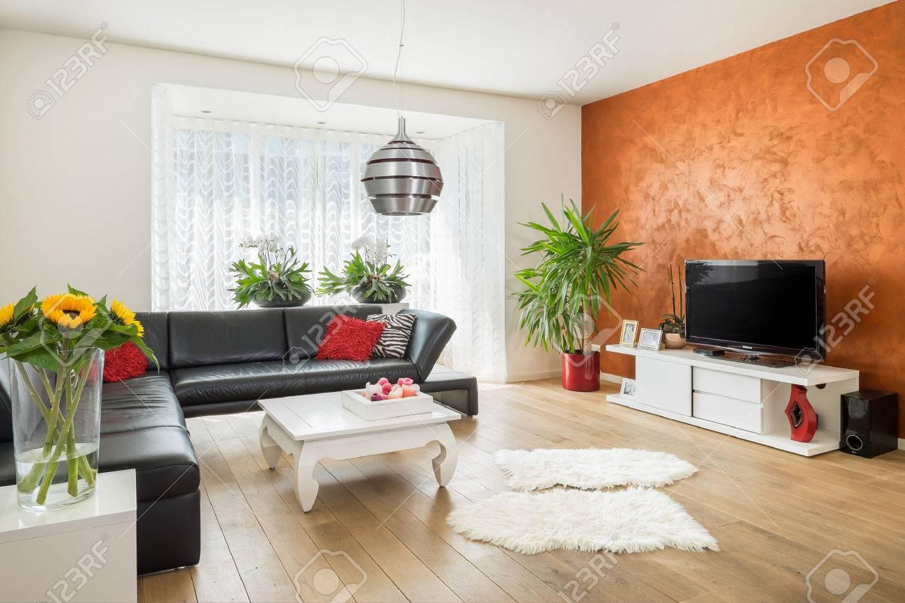 Modern European style living room Standard-Bild - 42834807