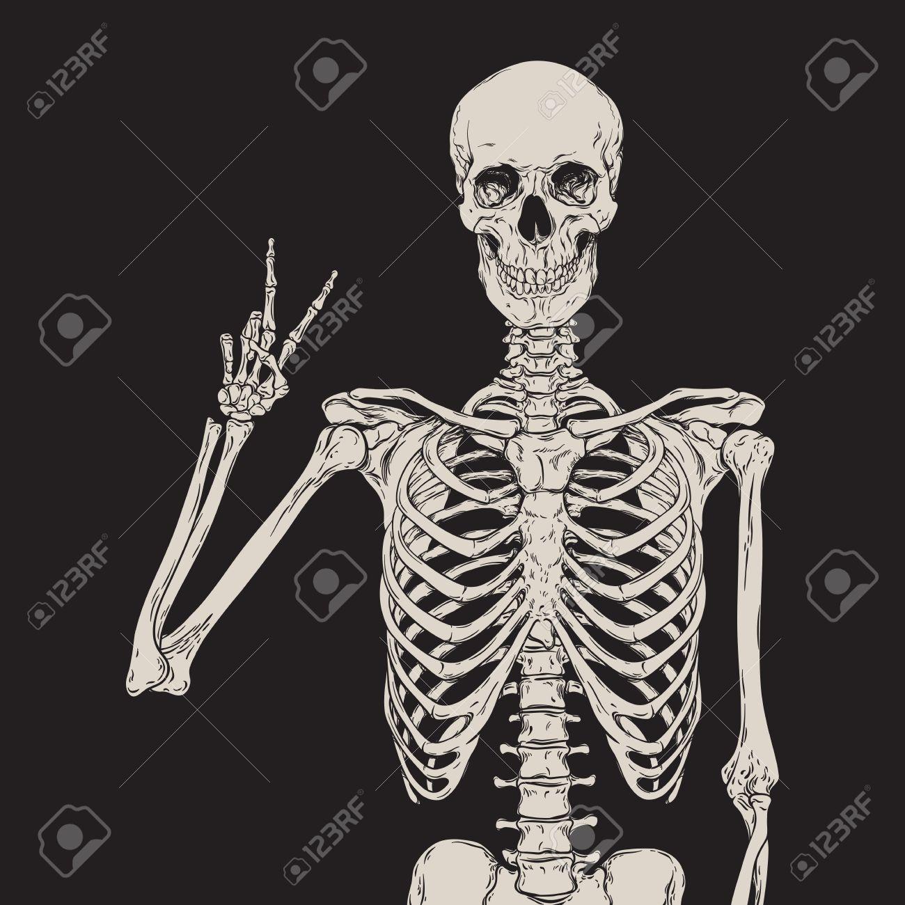 Human skeleton posing isolated over black background vector illustration - 62541050