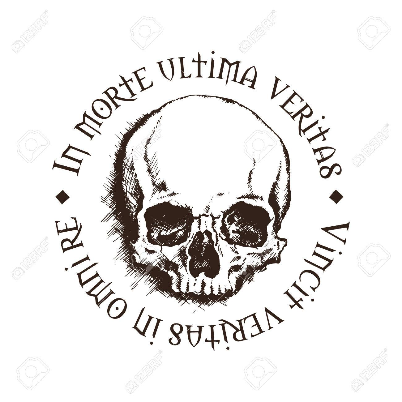 Vector skull with a latin inscription meaning