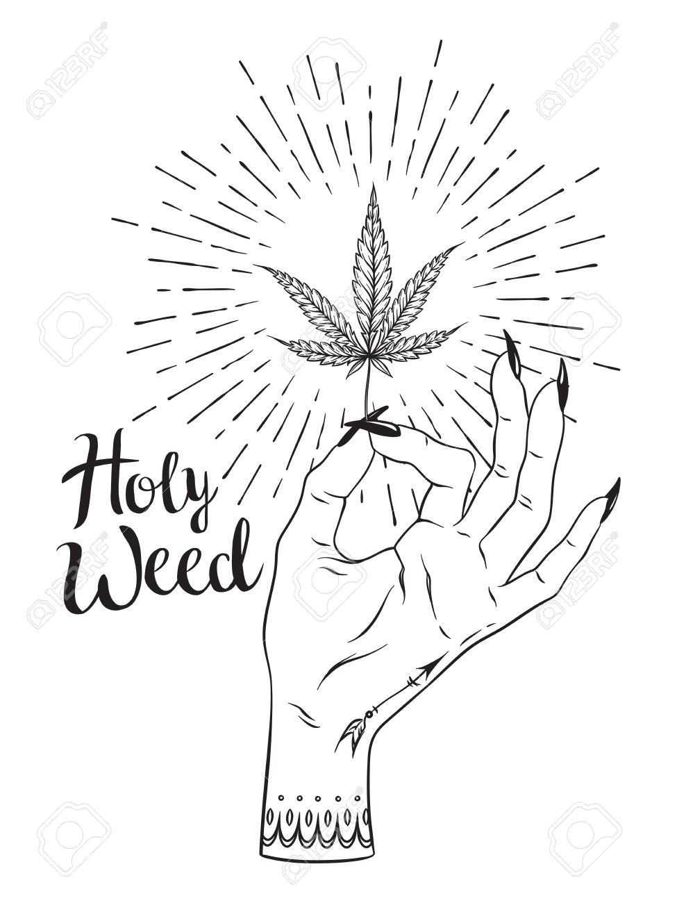 Weed Blatt 15