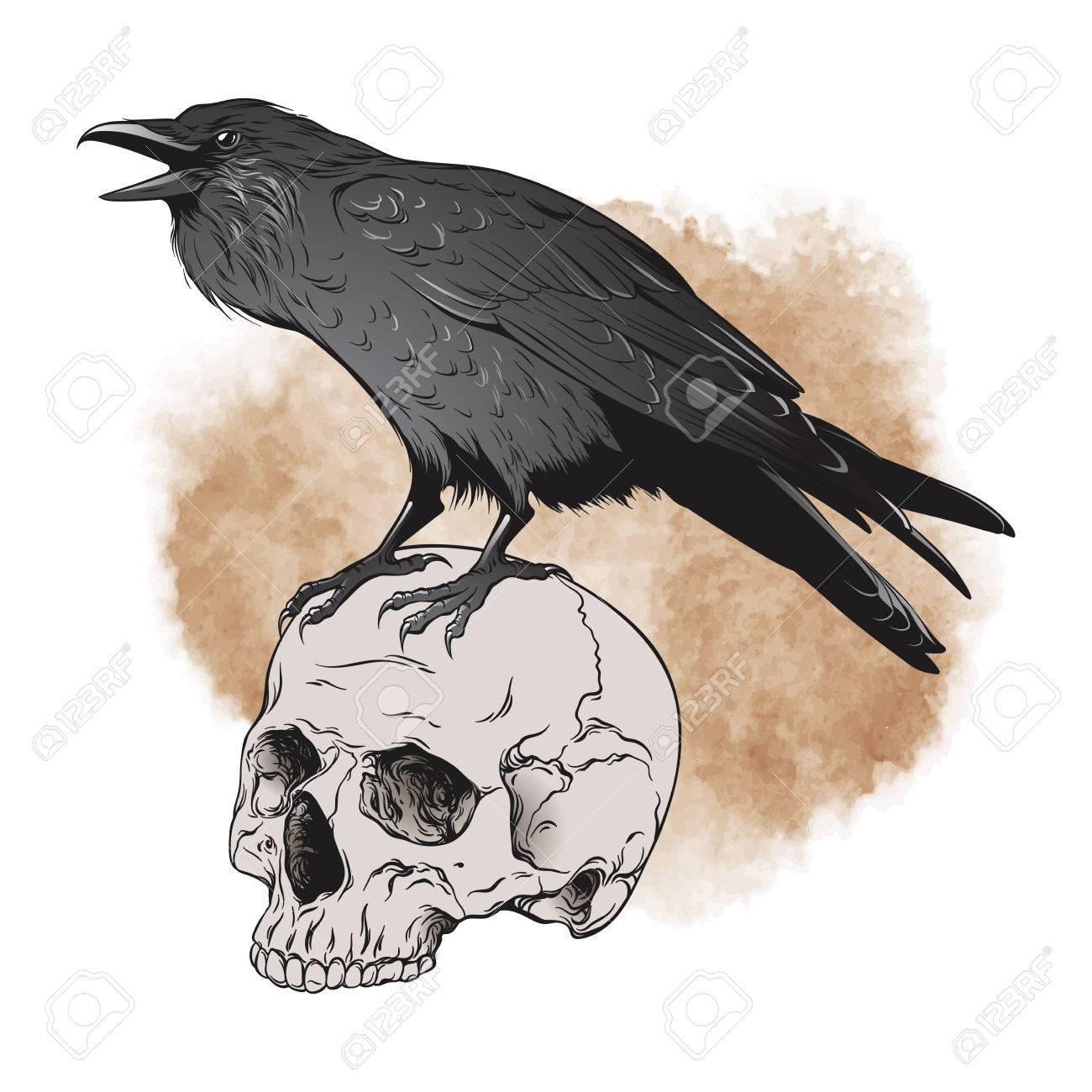 Raven and skull on sepia background vector illustration. - 78496395