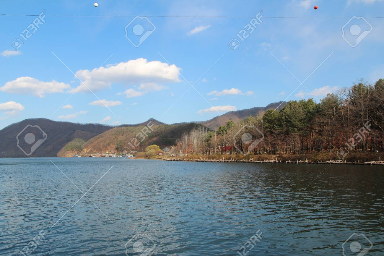 Autumn Scenery Of Nami Island In Sunny Day With Skyline Zip-wire ...