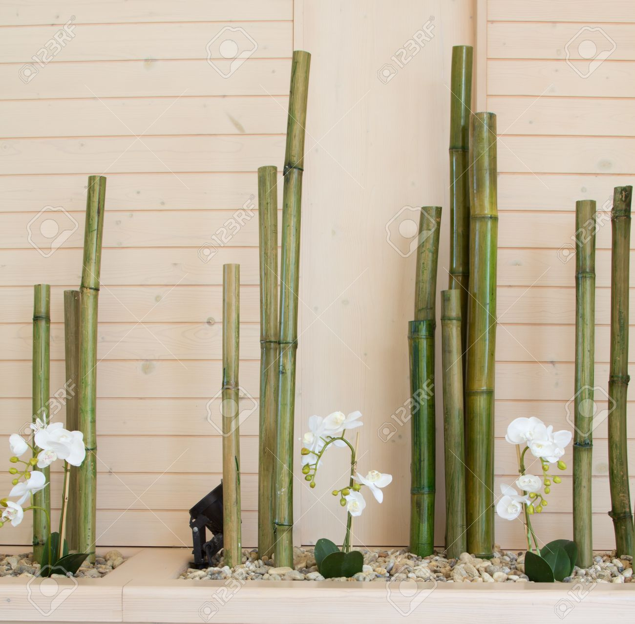 Orchideenbluten Mit Bambus Dekoration Lizenzfreie Fotos Bilder Und
