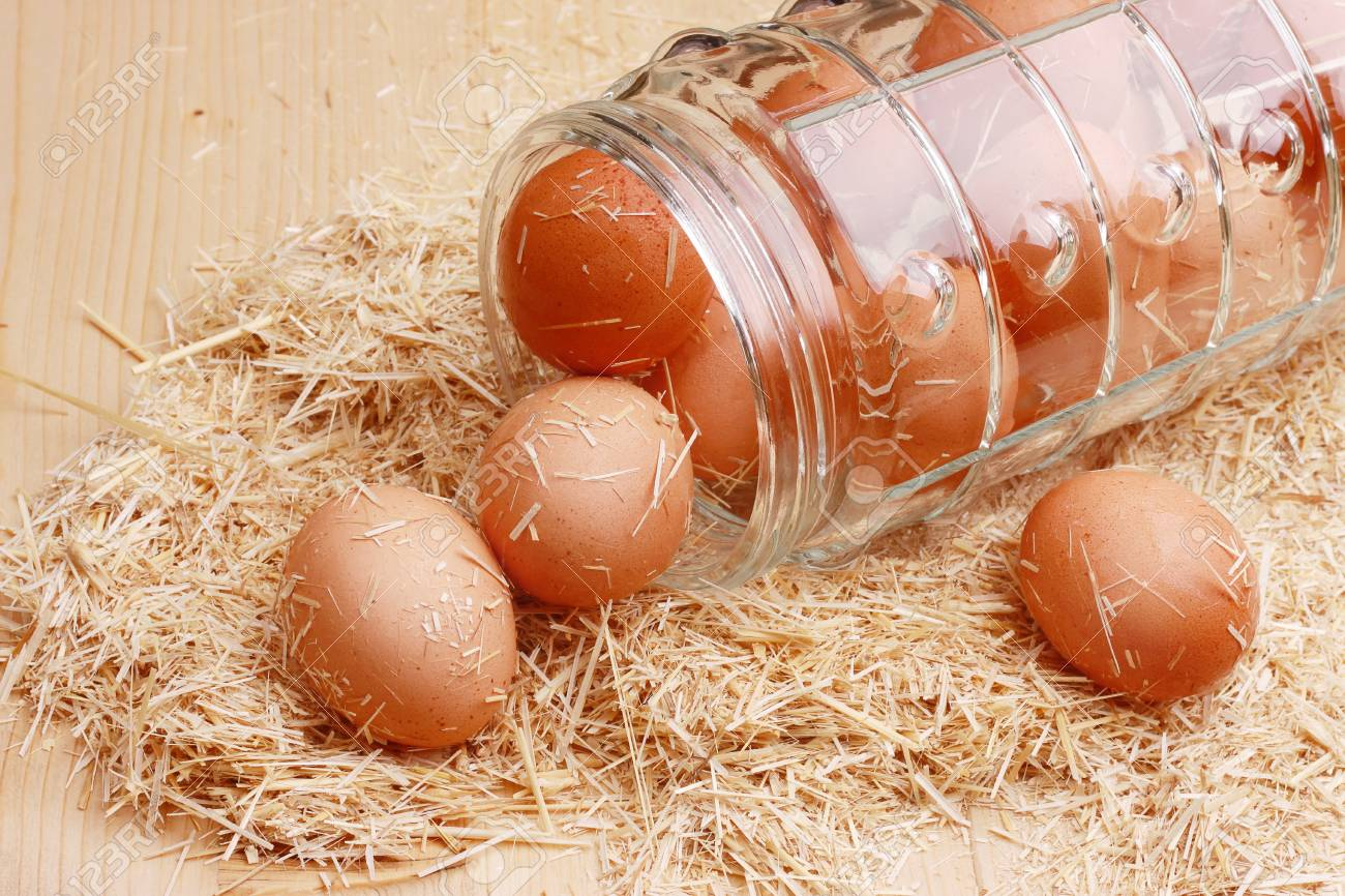Macro shoot of brown eggs at hay nest in chicken farm Stock Photo - 13284196