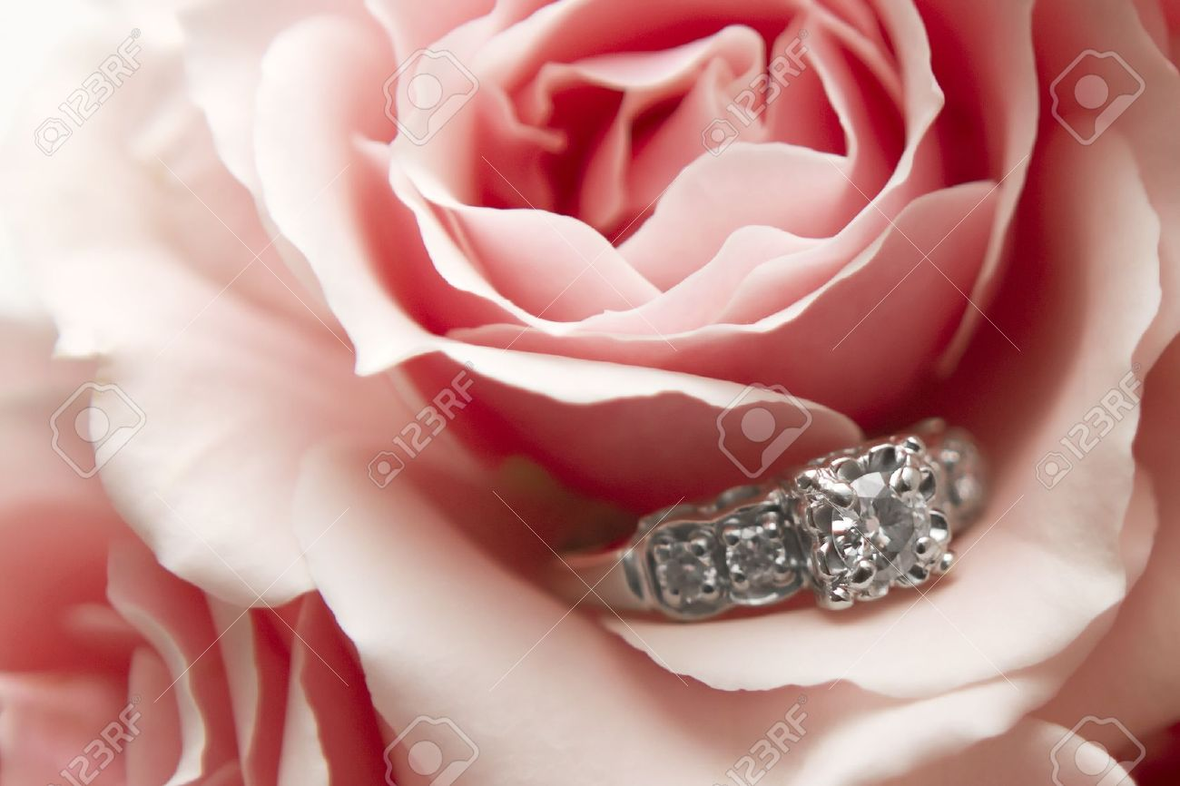 Diamond ring nestled within a pink and red flower Stock Photo - 8923702