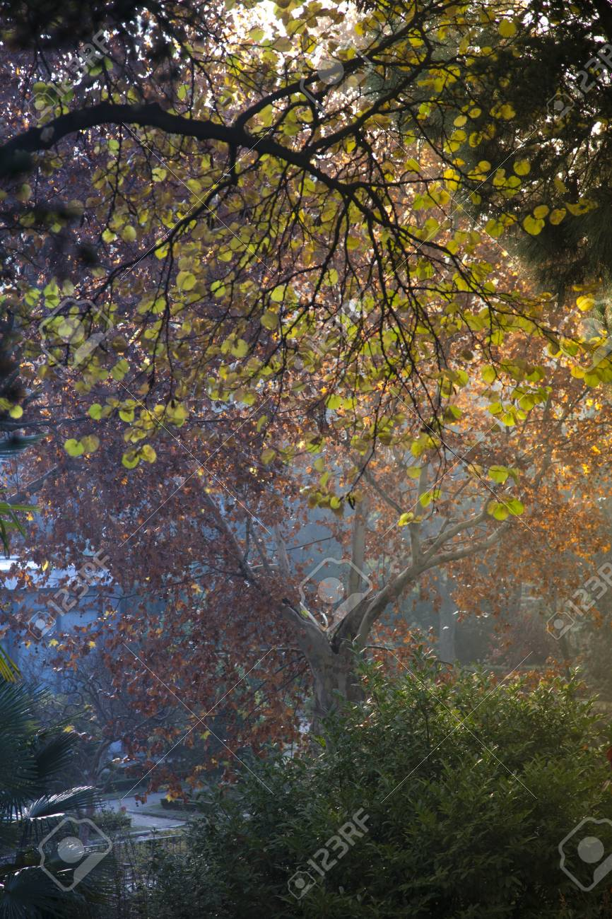 Campo de Moro gardens in autumn, Madrid, Spain Stock Photo - 13125871
