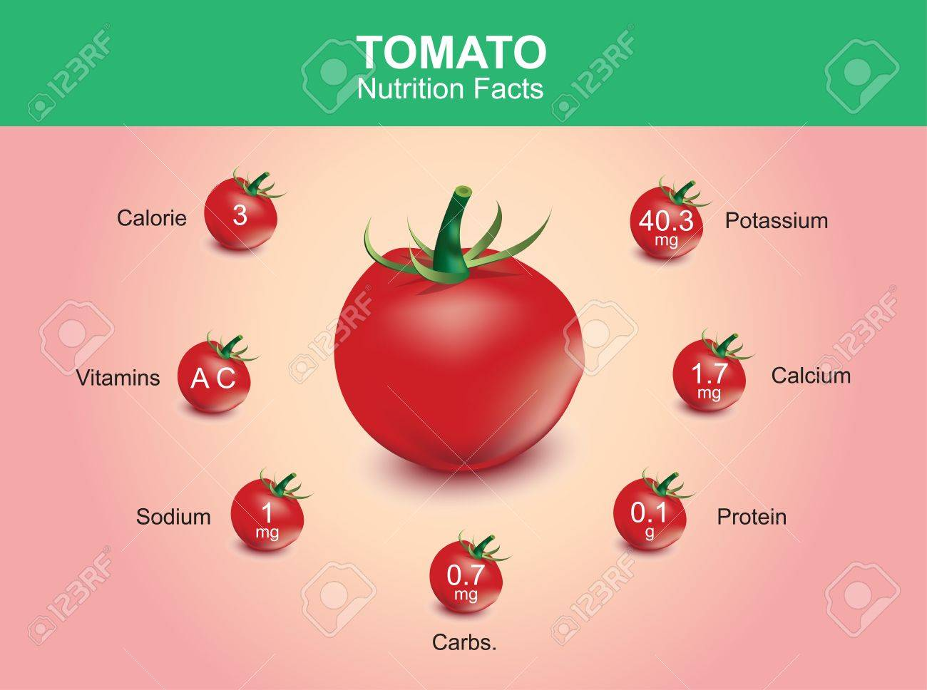 Tomato Nutrition Facts Tomato Fruit With Information Tomato Vector Royalty Free Cliparts Vectors And Stock Illustration Image 40968562