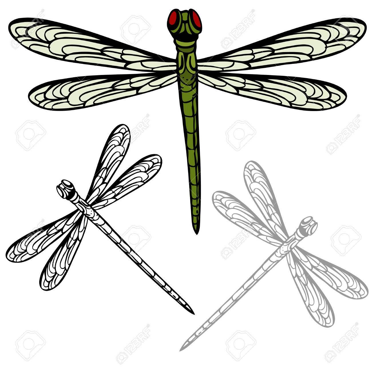 リアルなトンボのイメージ のイラスト素材 ベクタ Image