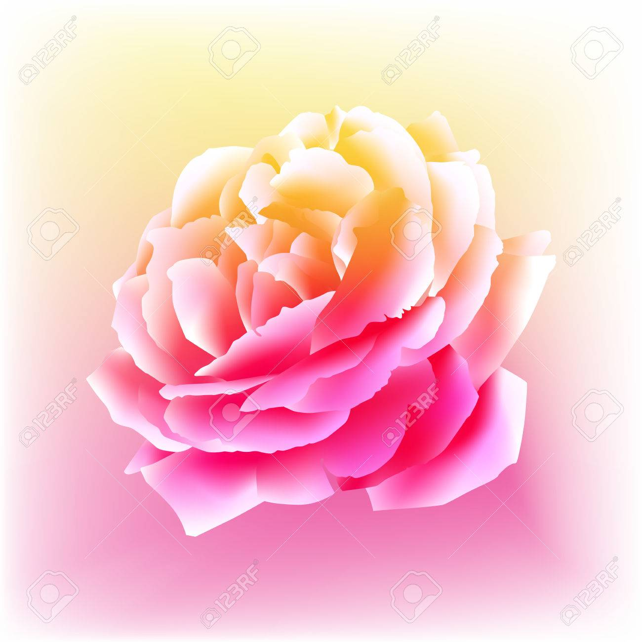An image of a rose bloom in a watercolor paint style. Stock Vector - 9036799